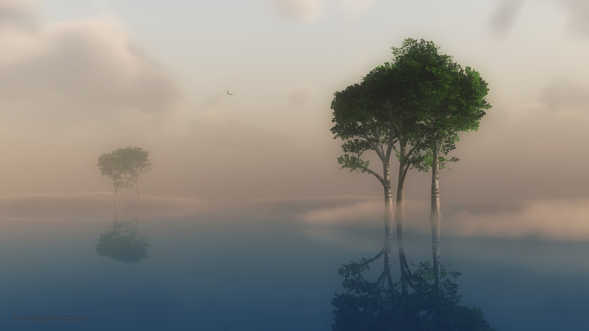 Best Fog with Reflection HD Wallpaper