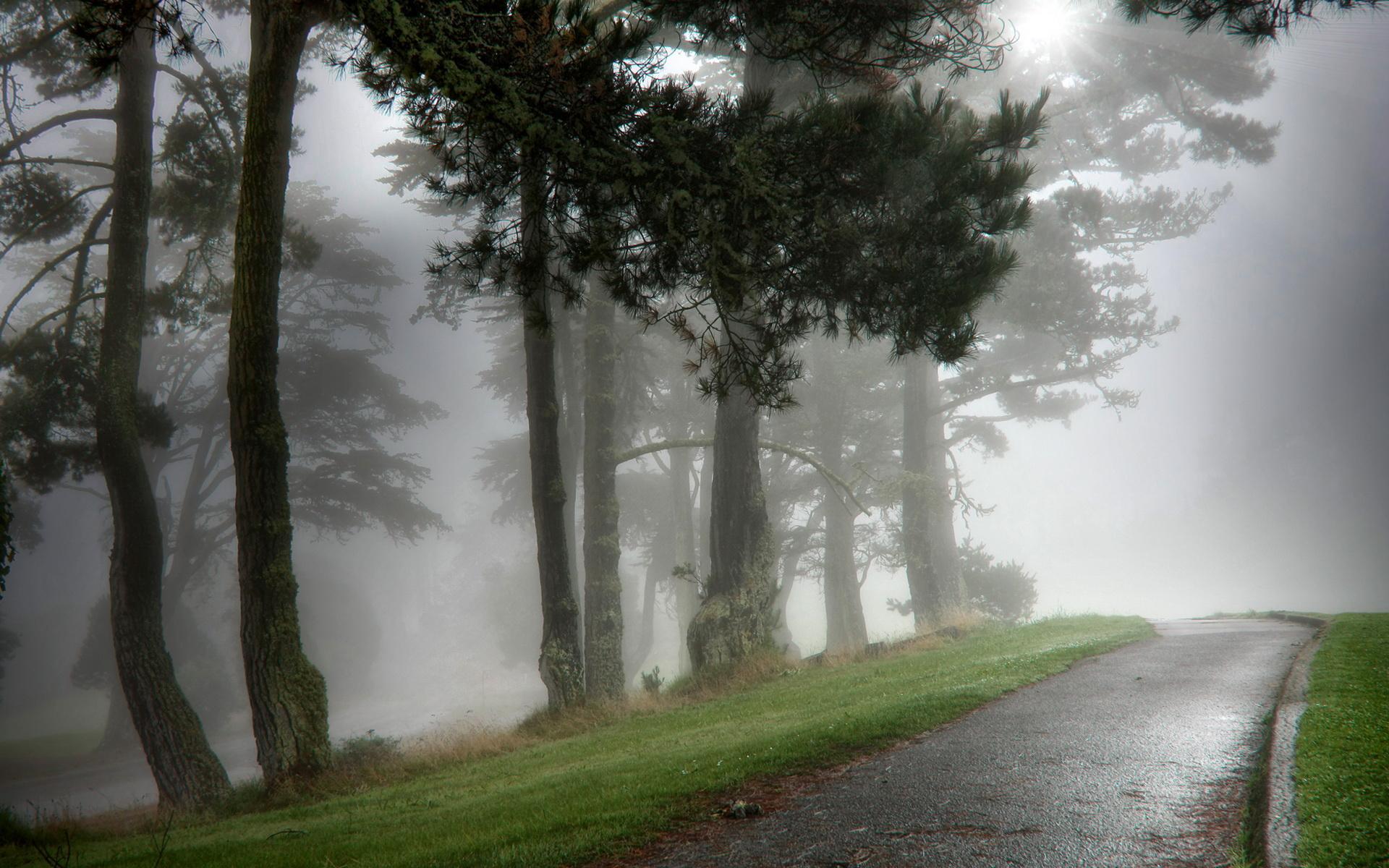... Best Wallpapers HD; Fog Wallpapers