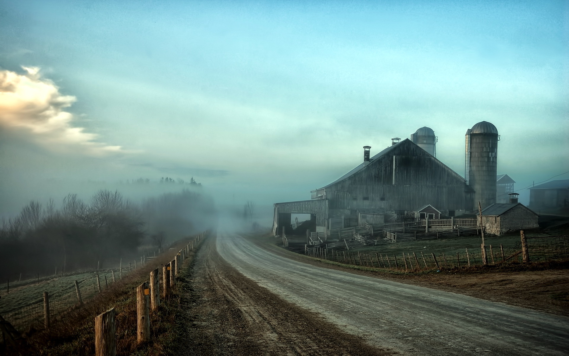 Foggy farmstead