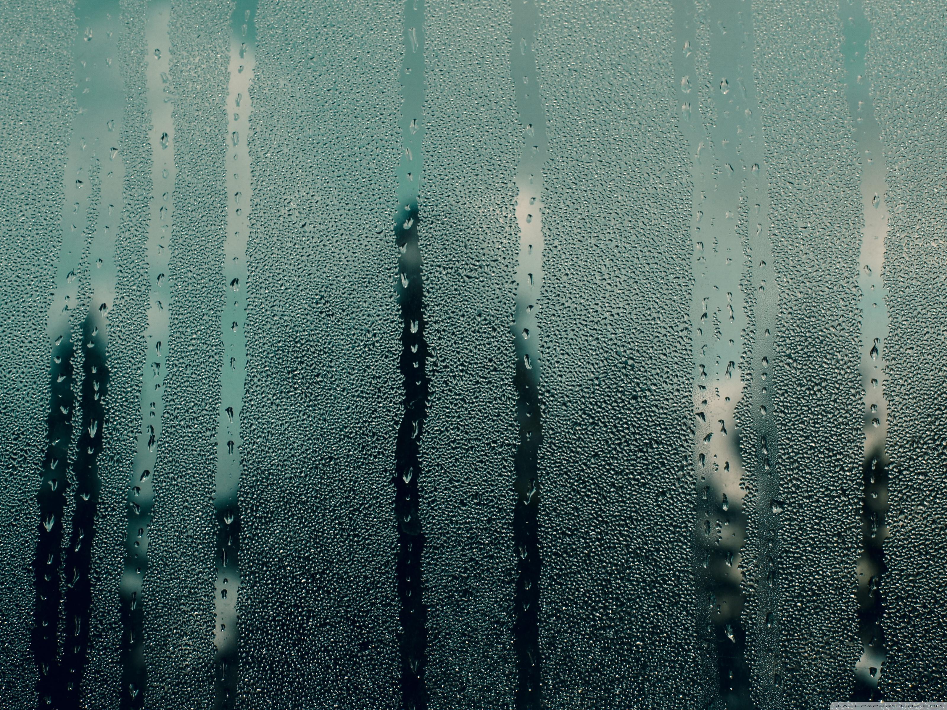 Foggy Window Wallpaper