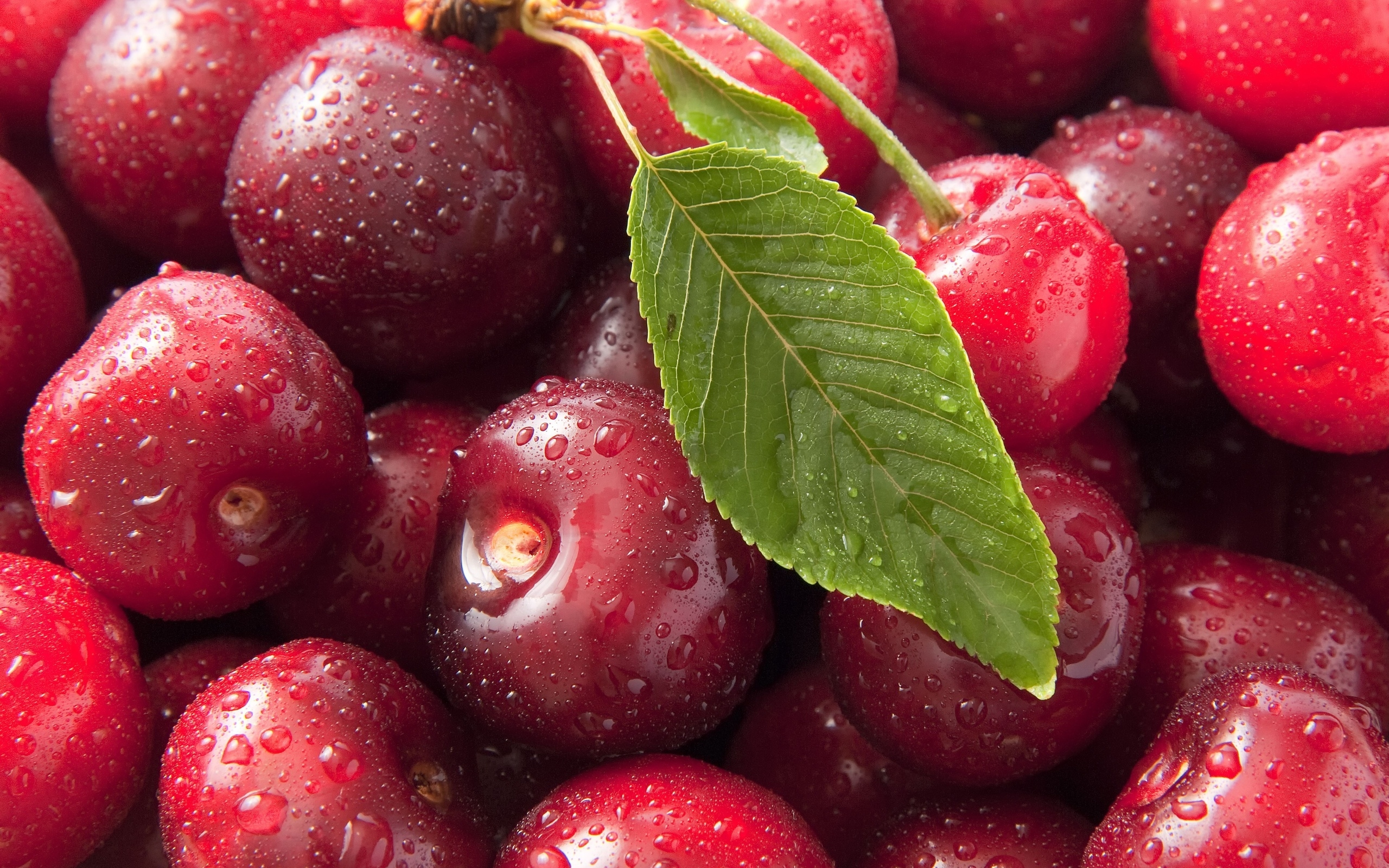 2560x1600 Wallpaper cherry, drops, leaves, food, berry
