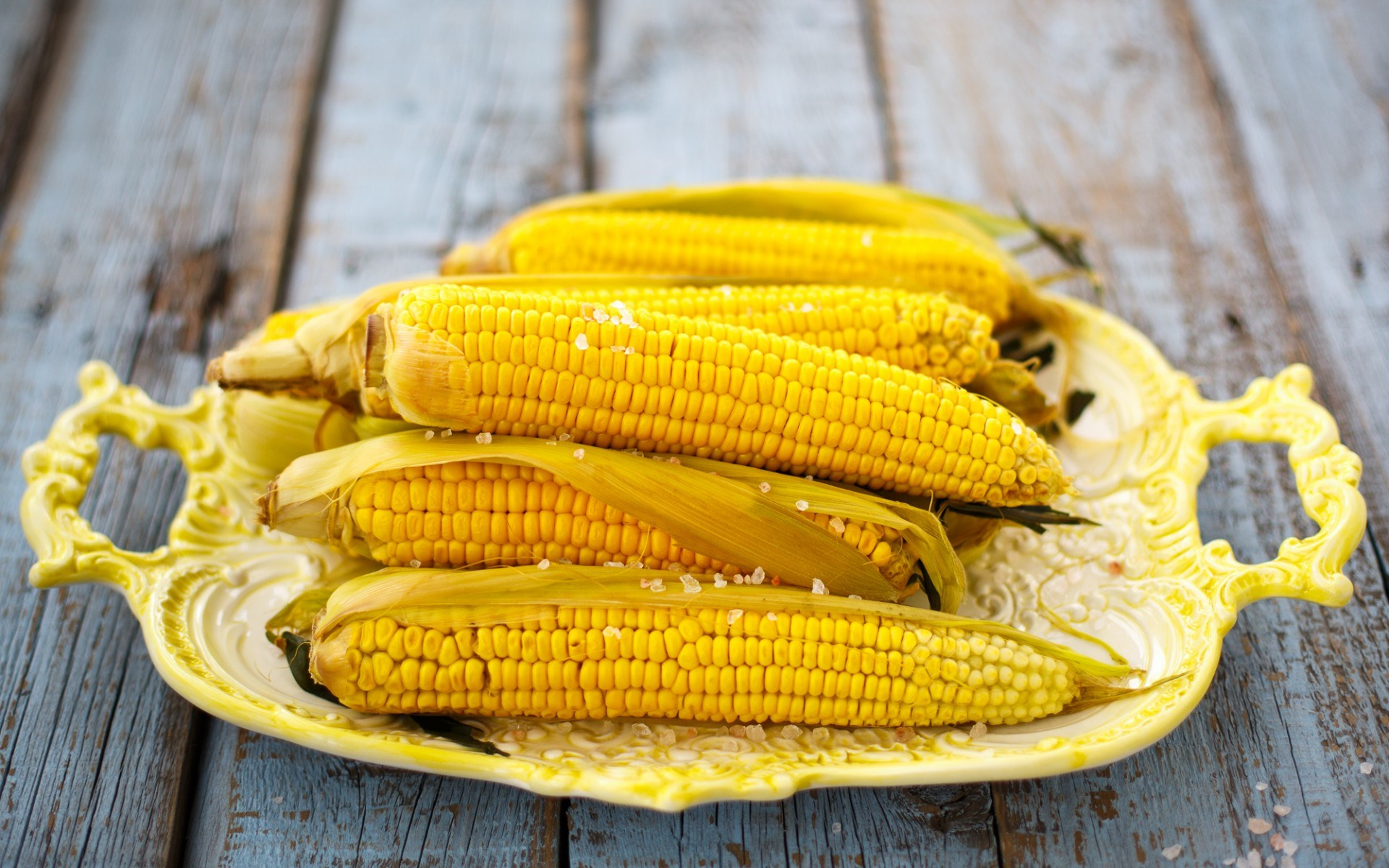 Food Maize Yellow