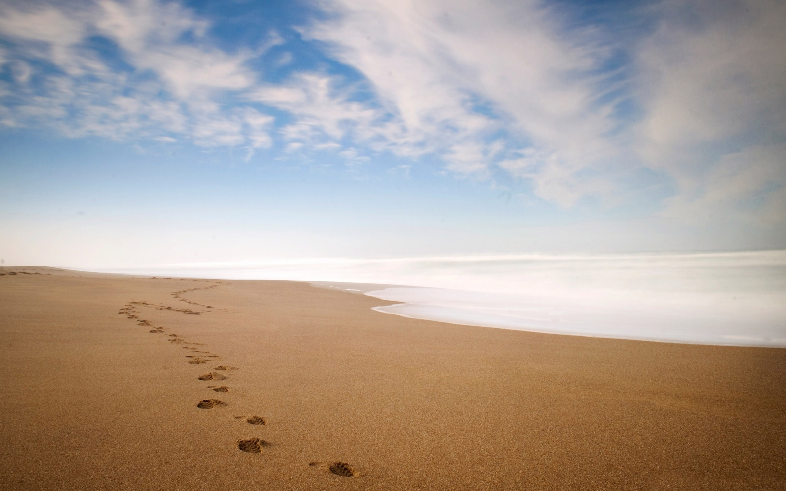 Footprints Background