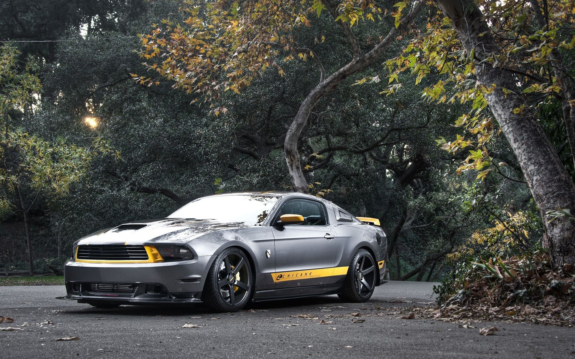 Description: The Wallpaper above is Ford Mustang Chicane Wallpaper in Resolution 1920x1200. Choose your Resolution and Download Ford Mustang Chicane ...