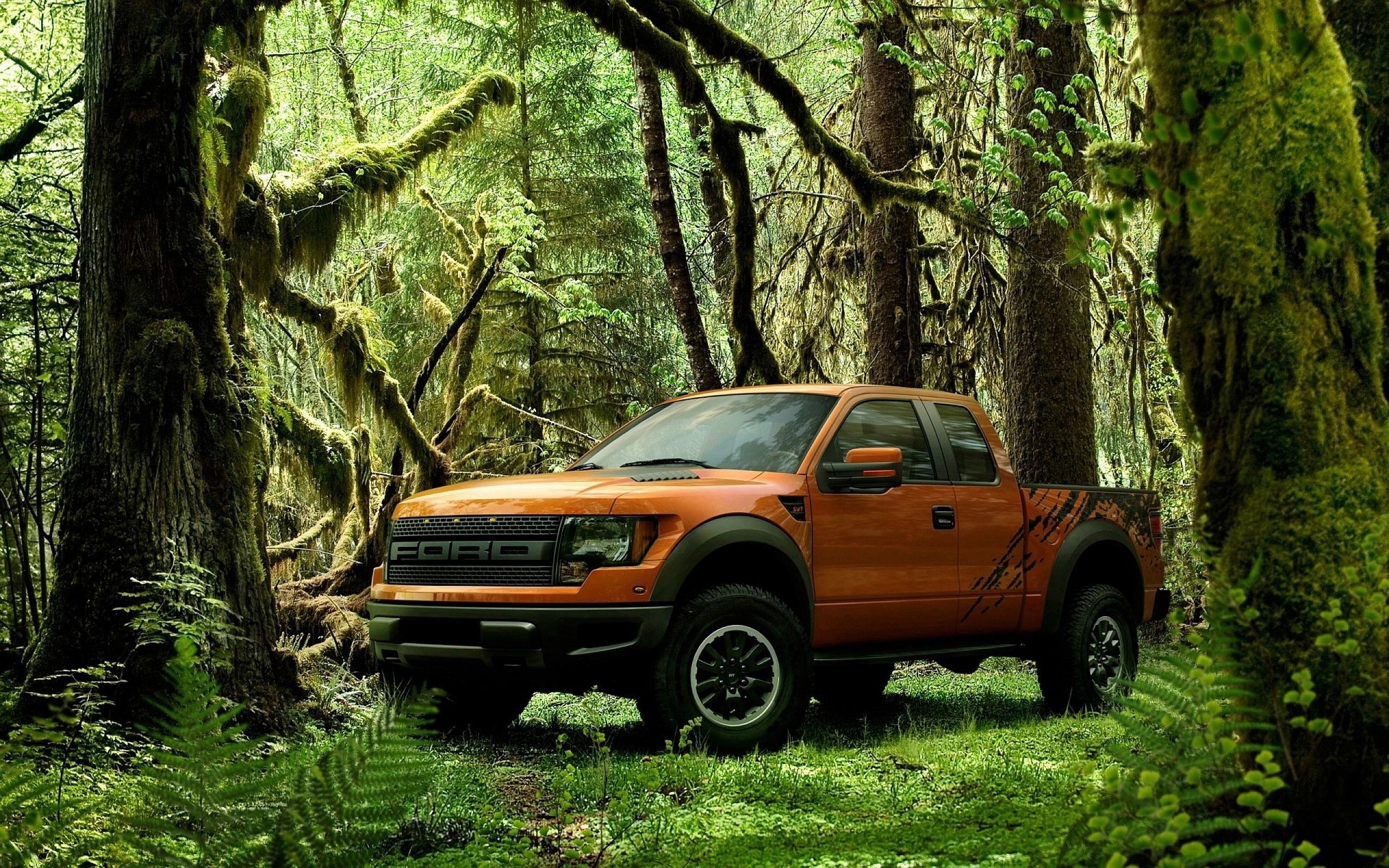 Ford Raptor Forest