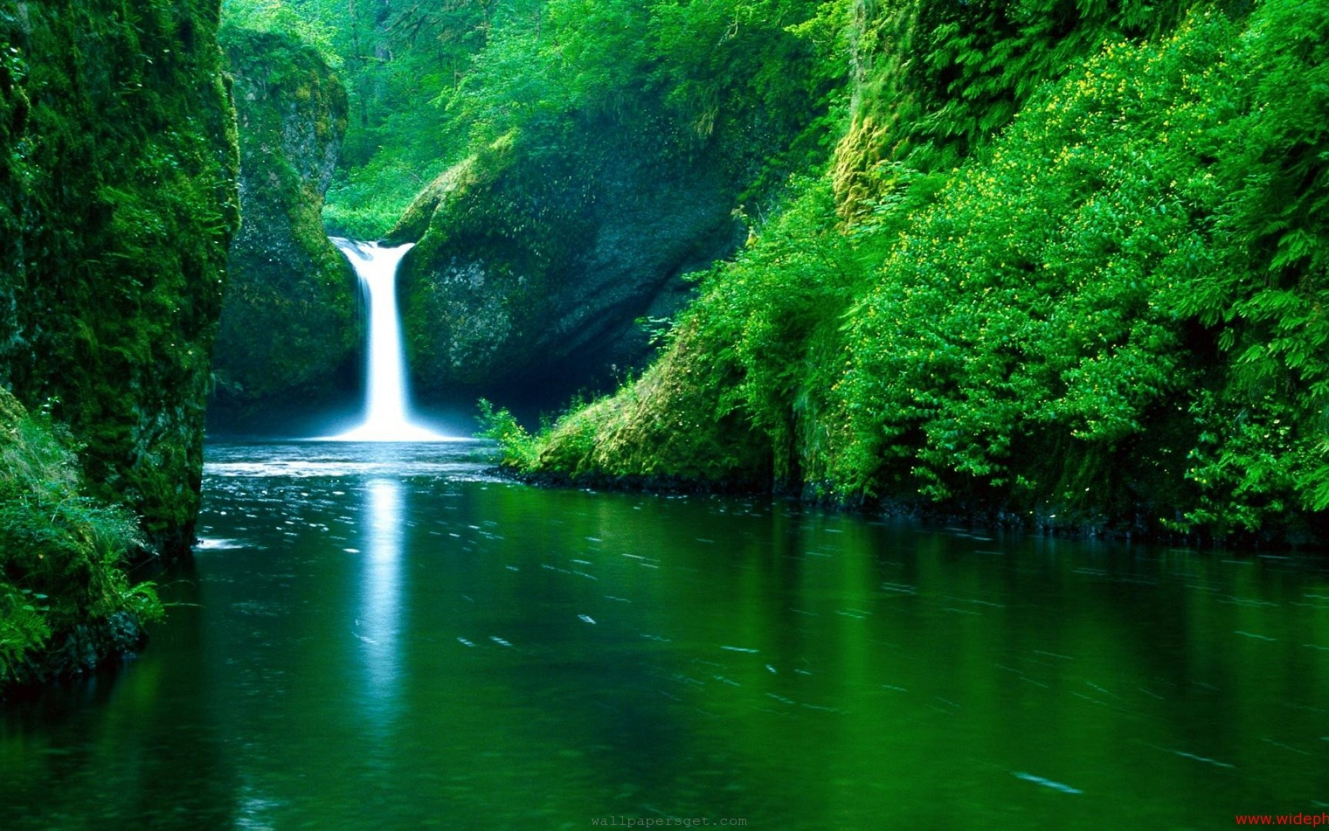 Waterfall Forest Background