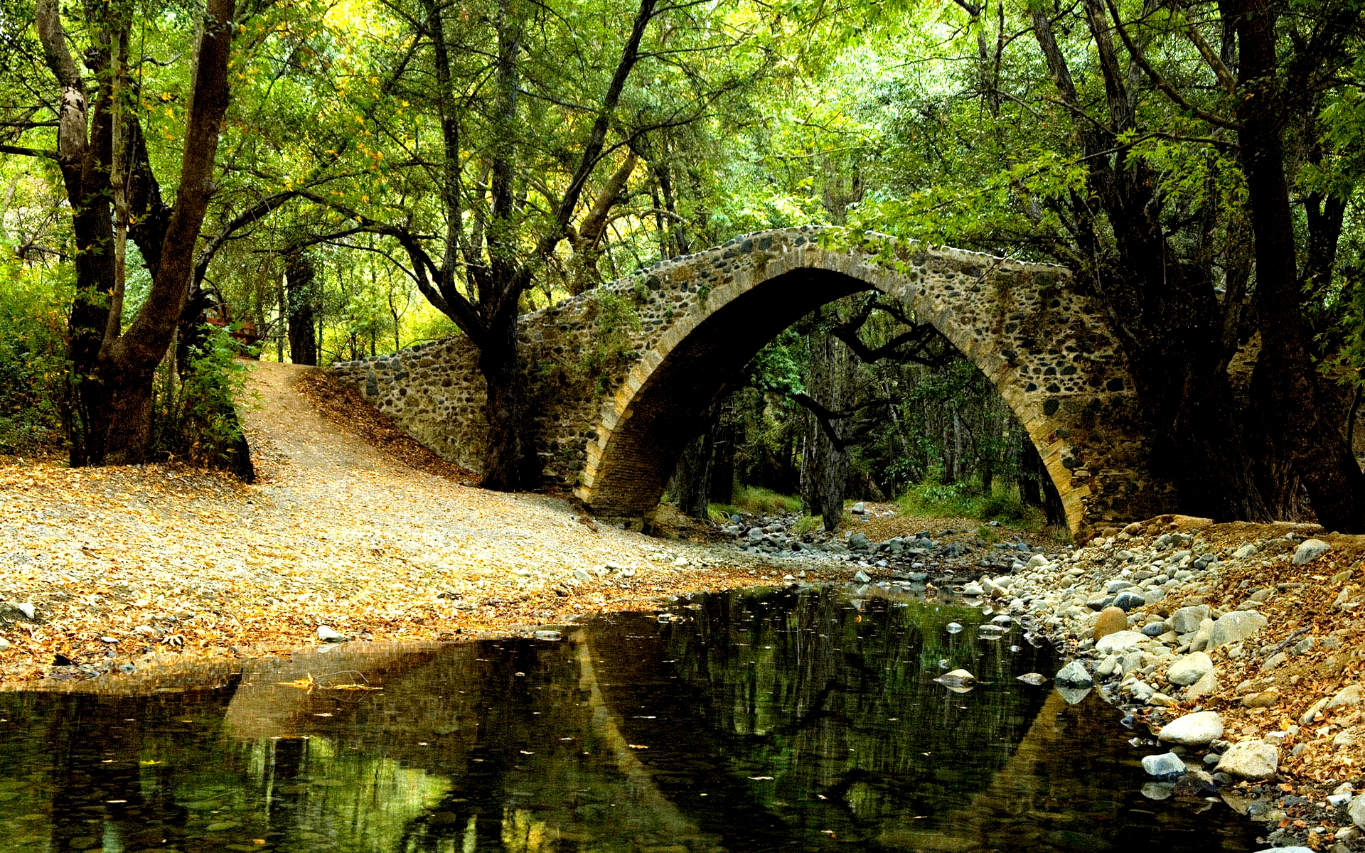 Forest Bridge Wallpaper ...