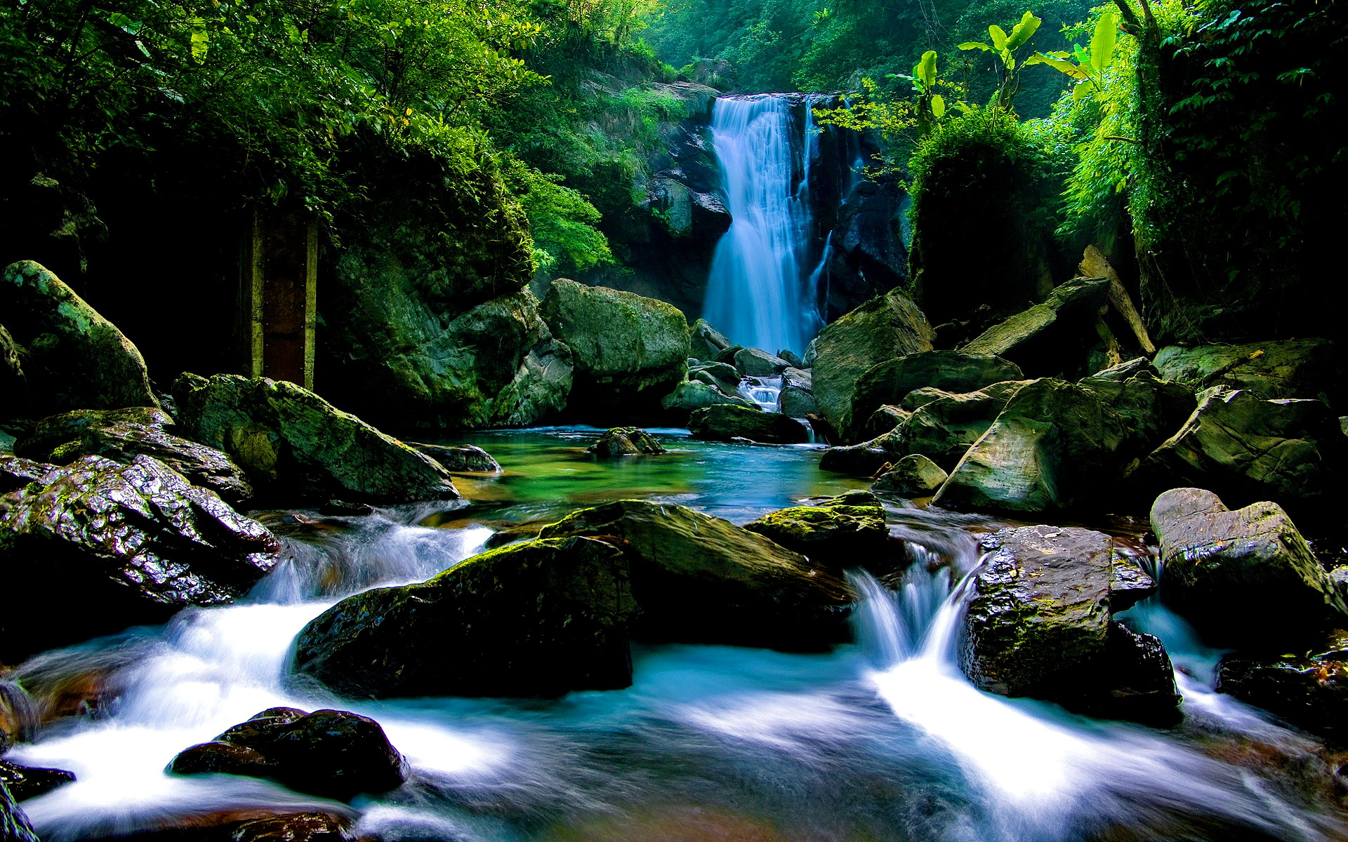 Forest Waterfall Wallpaper