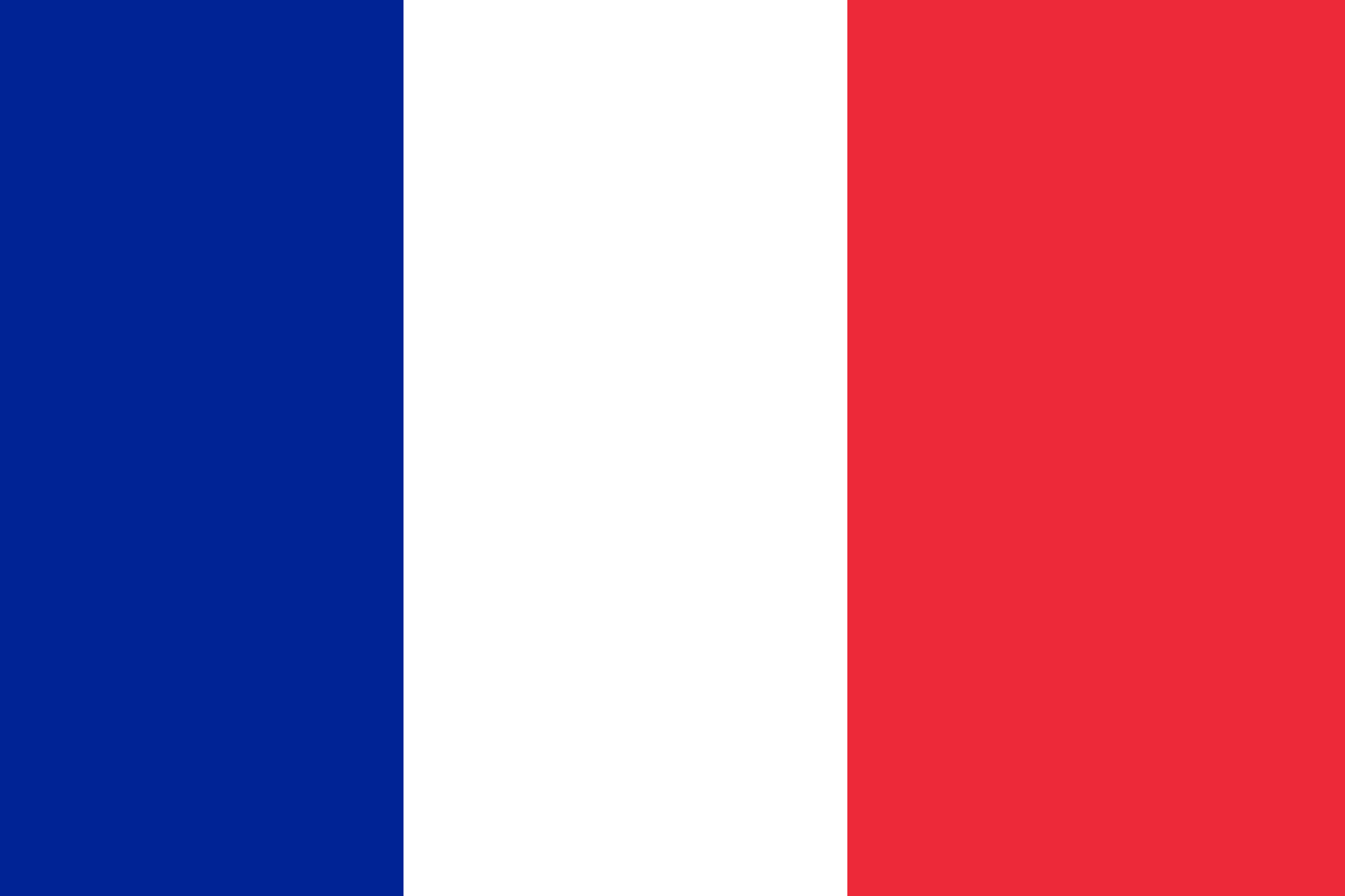 Variant flag of France