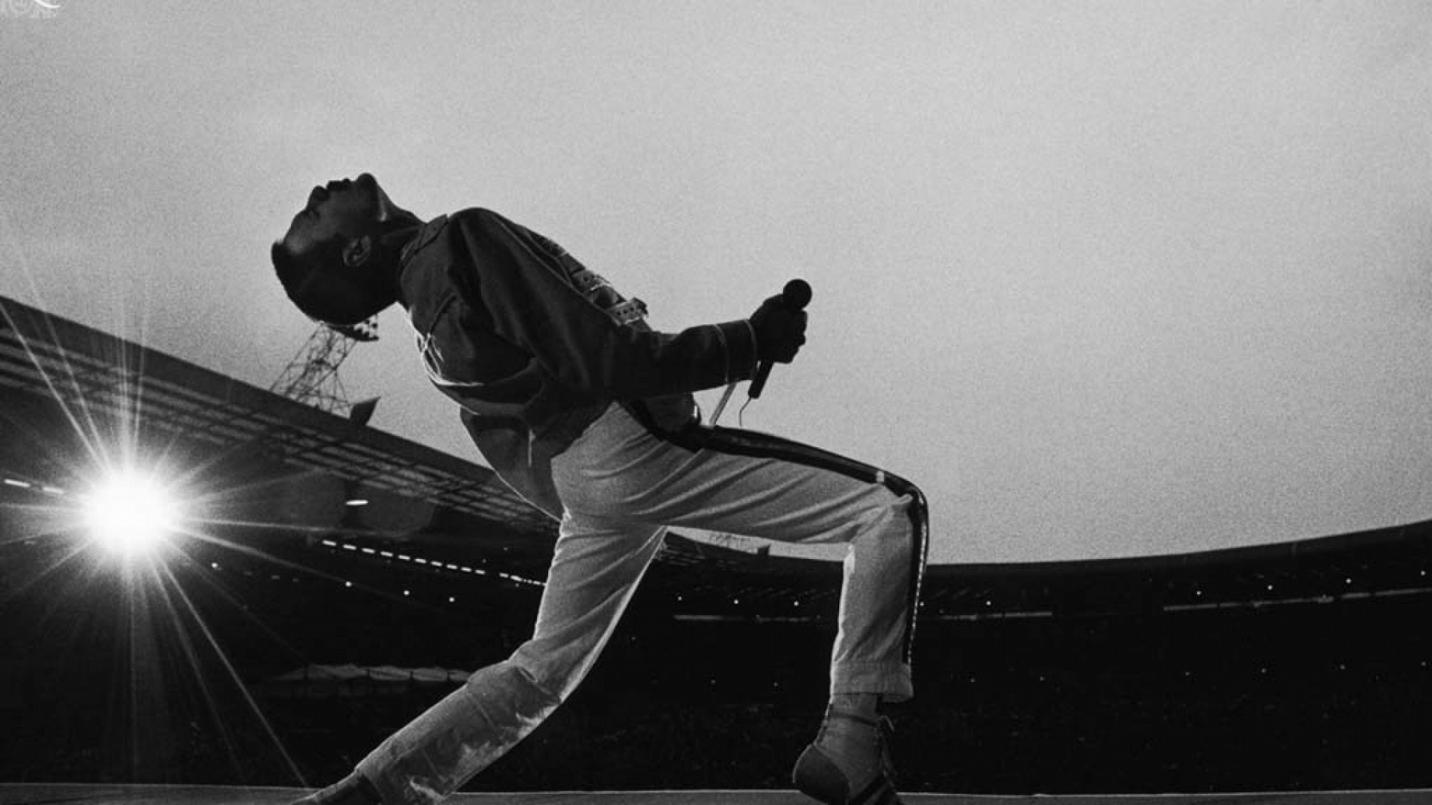 View And Download Freddie Mercury HD Wallpapers ...