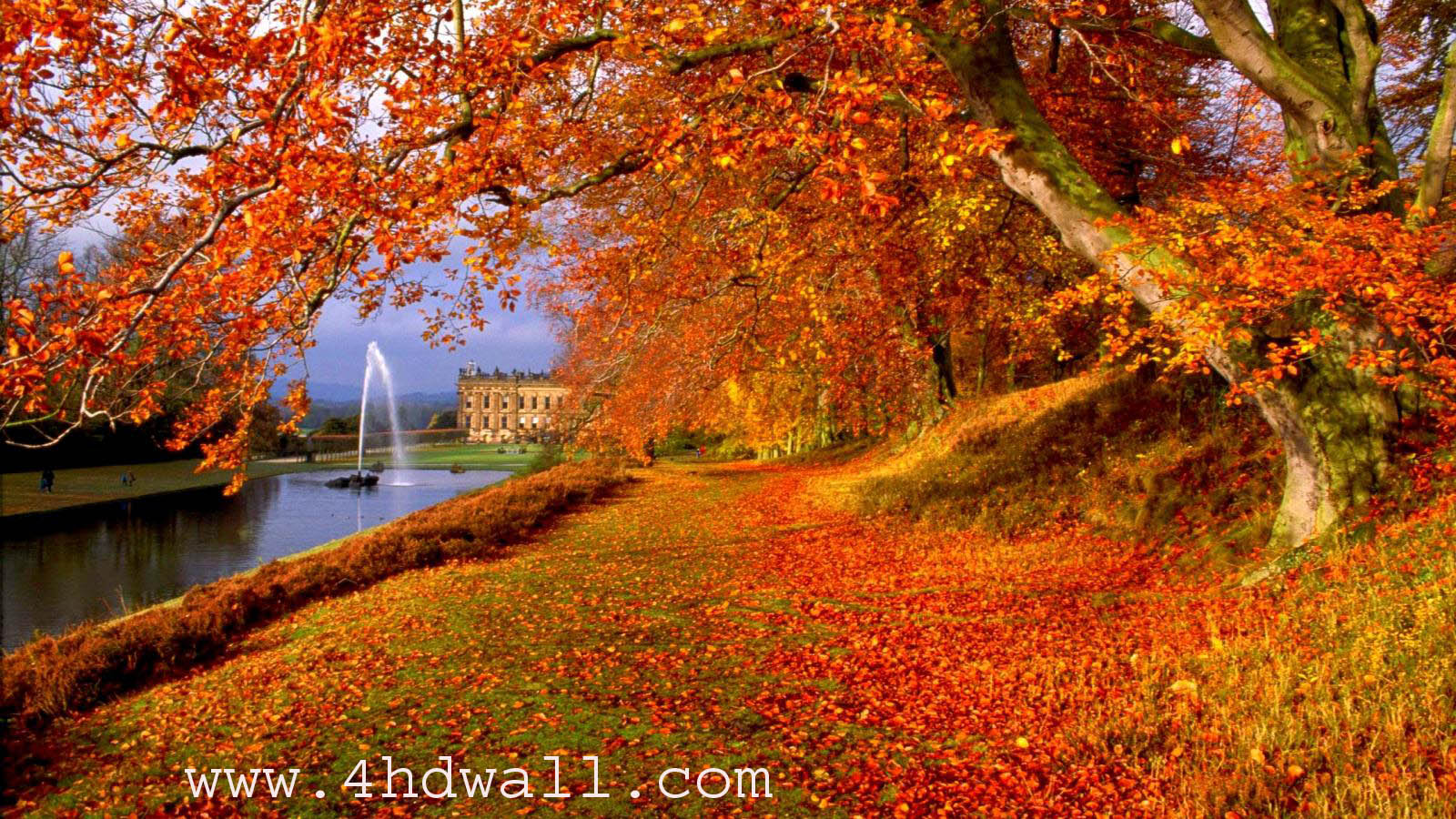 free autumn hd wallpaper 1600x900 8334