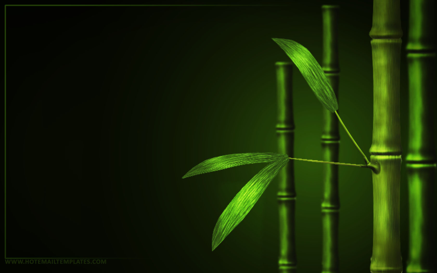 Free Bamboo Wallpaper