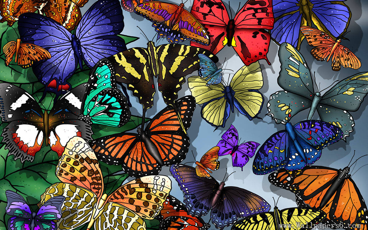 Butterfly Wallpapers 55
