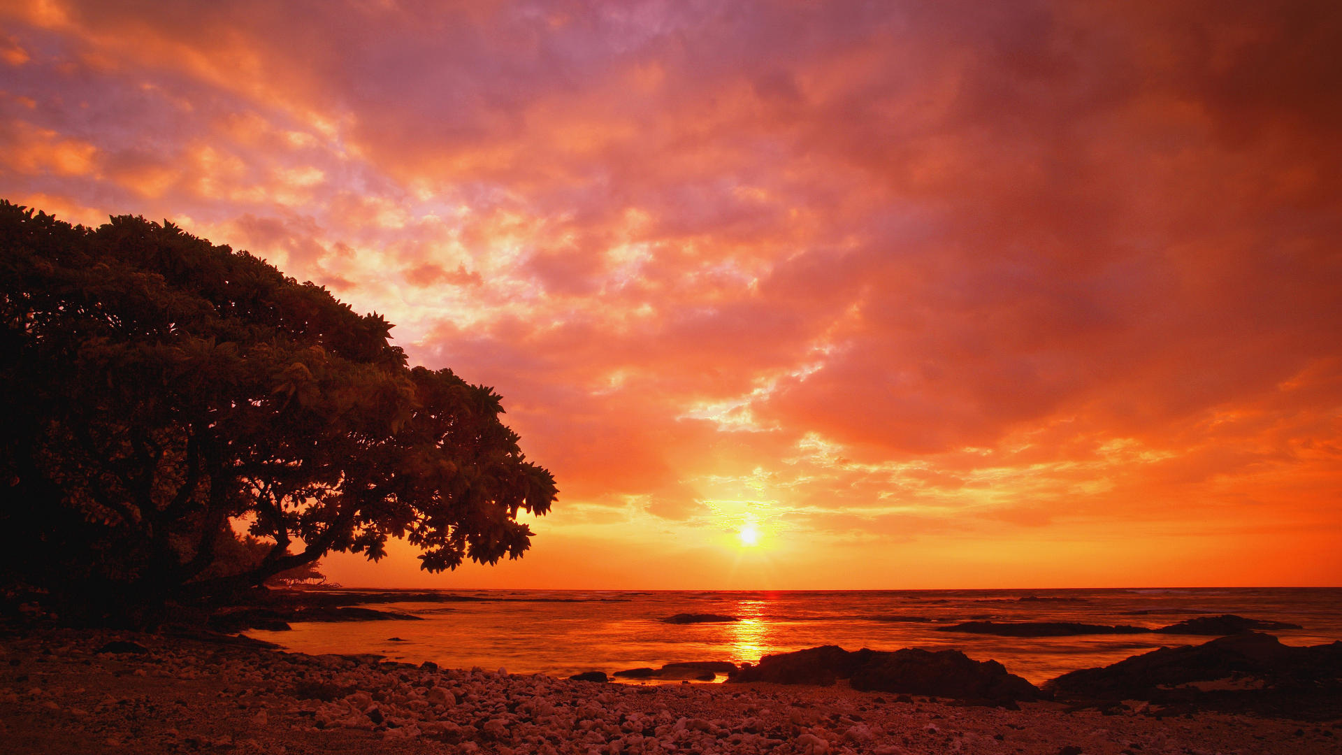Free California Sunset Wallpaper