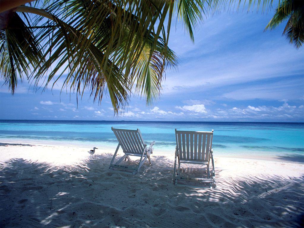 Views: 2318 Caribbean Wallpaper 7523