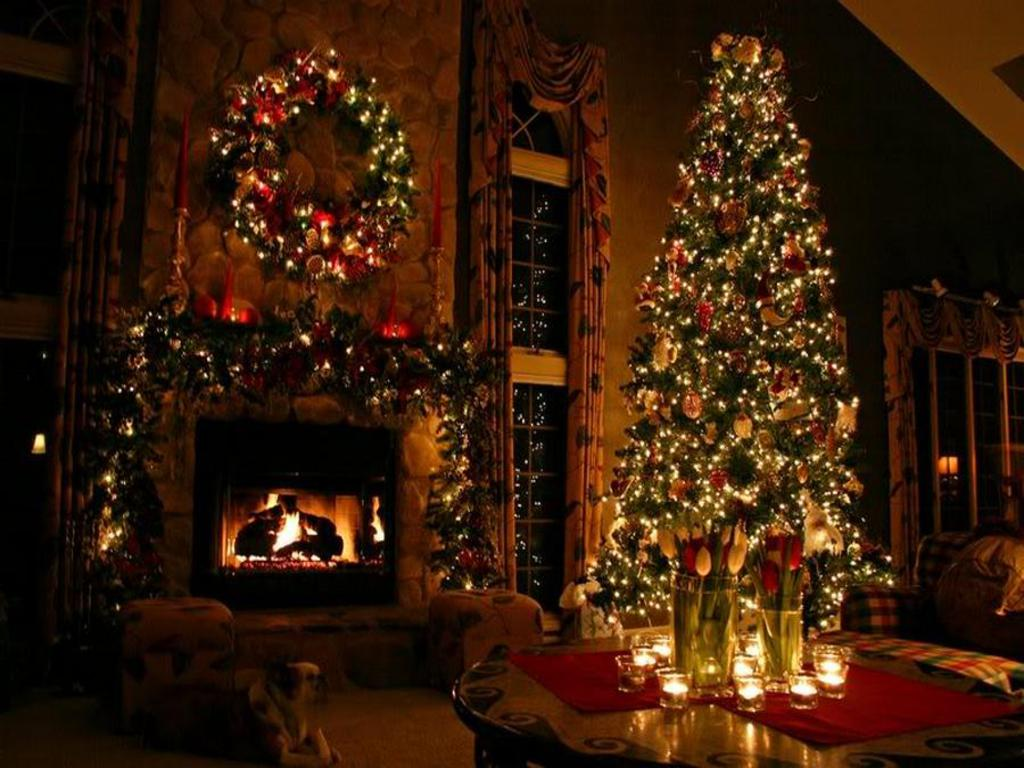 Pretty Christmas Trees Pretty Christmas Tree Wallpaper  1024X768  #26573