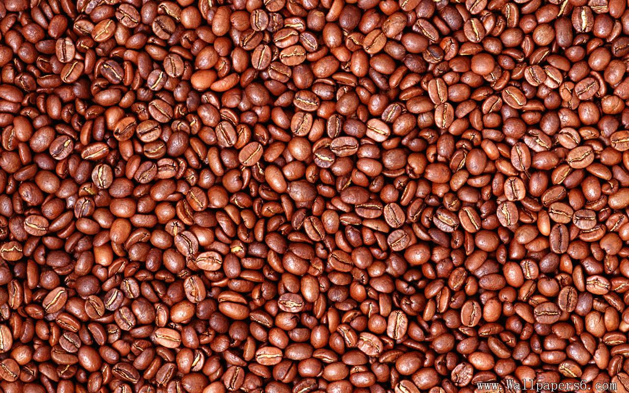 Free Coffee Grains Wallpaper