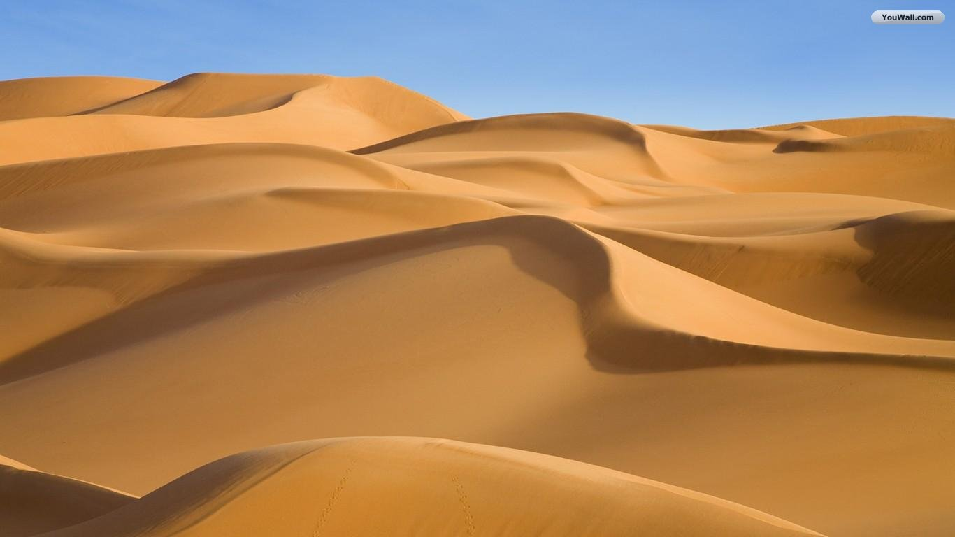 Free Desert Wallpaper