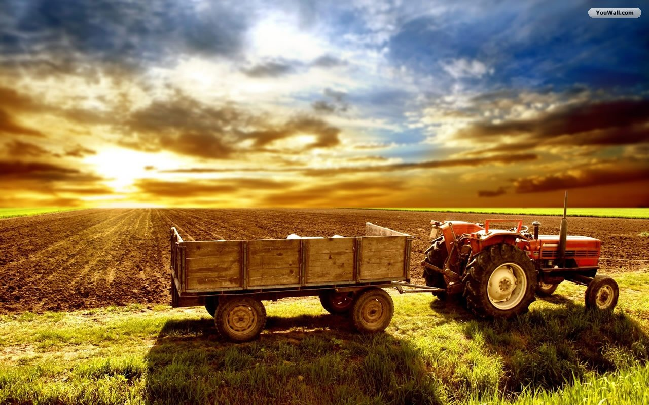 Free Farm Wallpaper