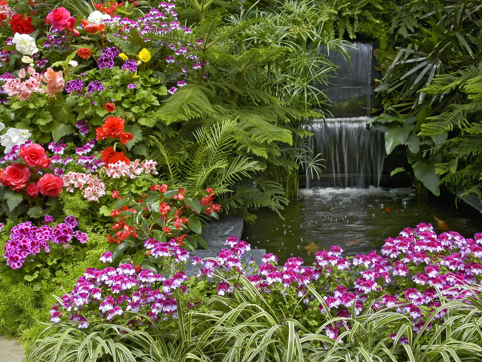 Free Garden Wallpaper