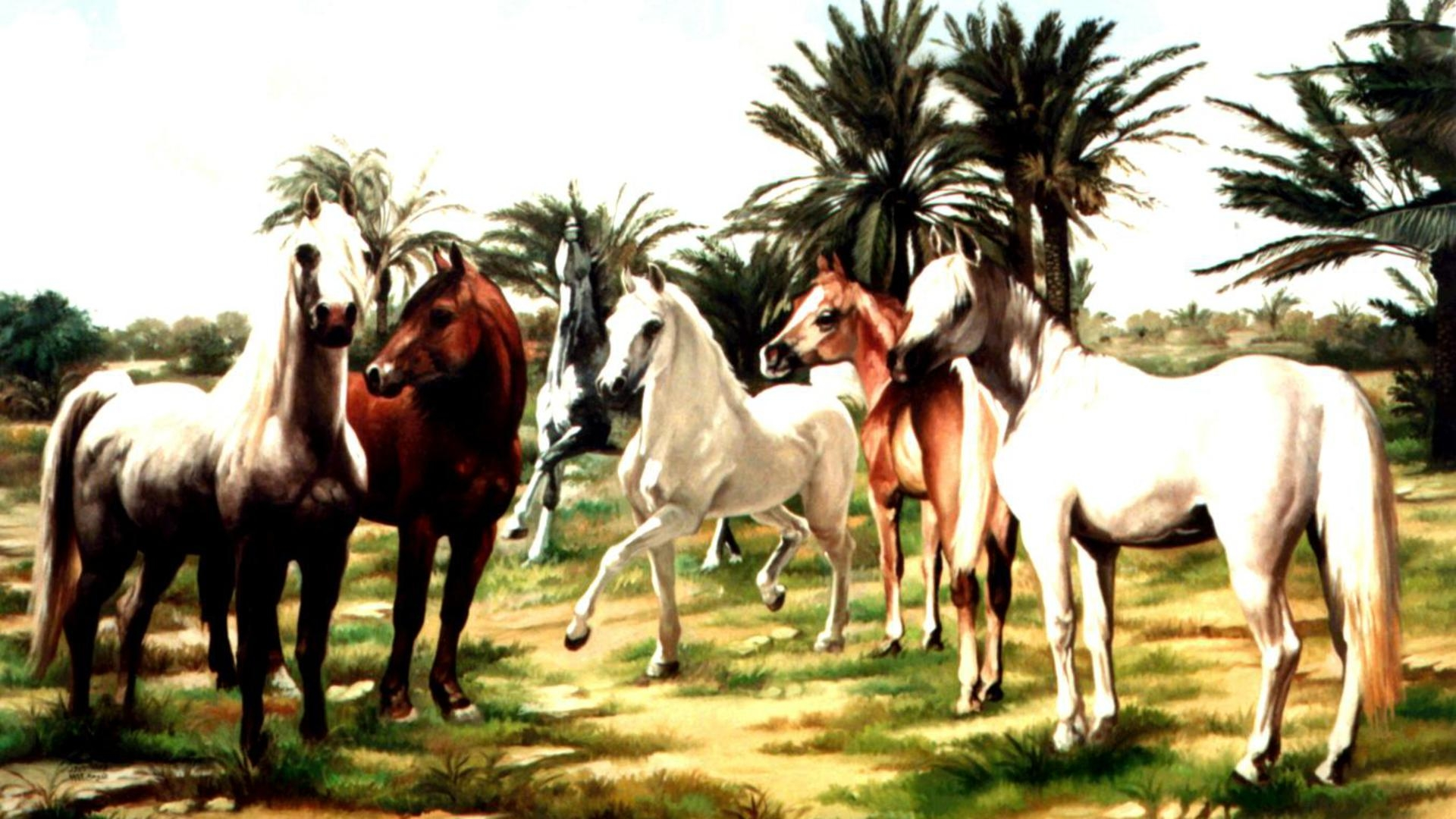 Horse Herd wallpaper