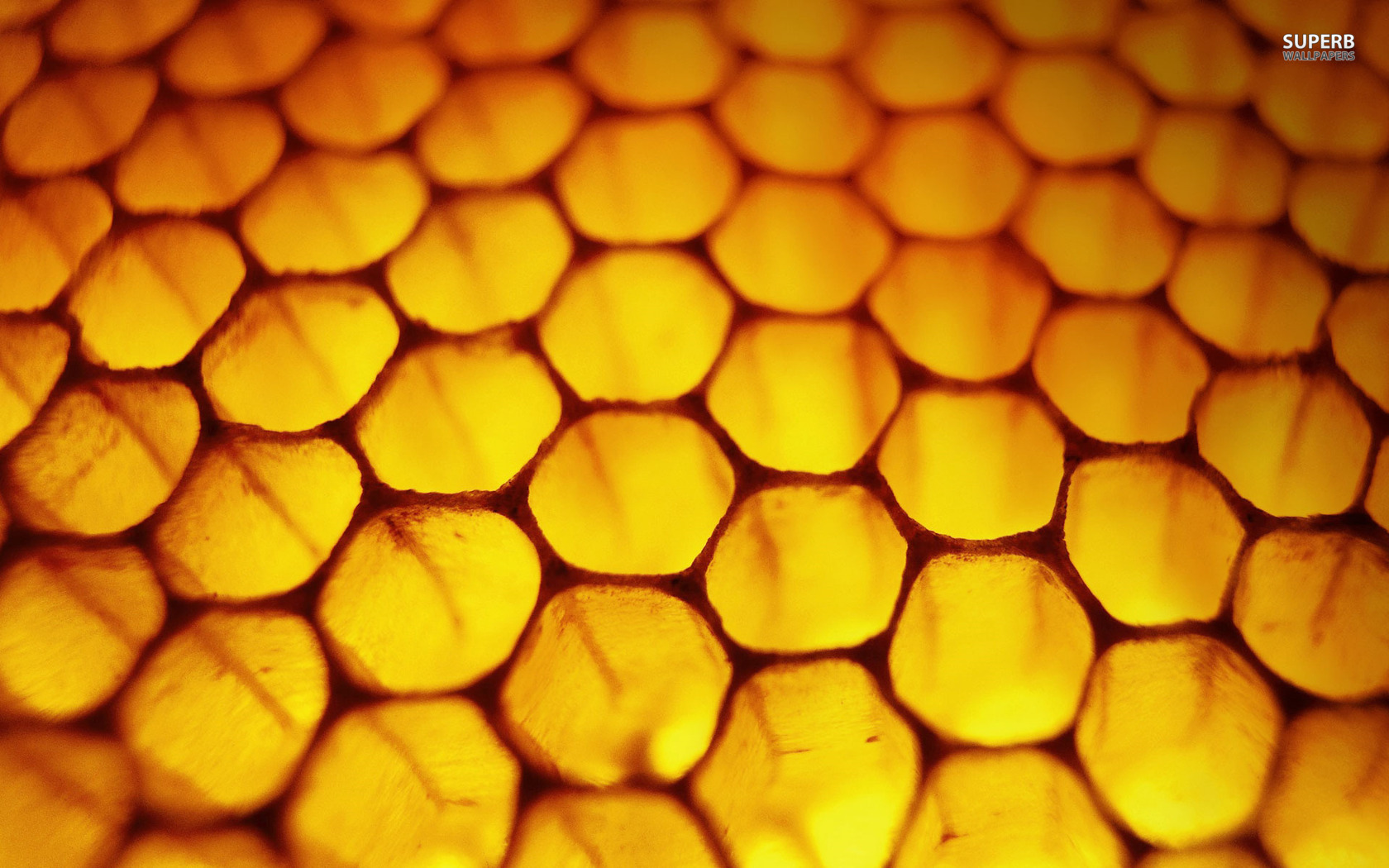 Honeycomb wallpaper 1680x1050