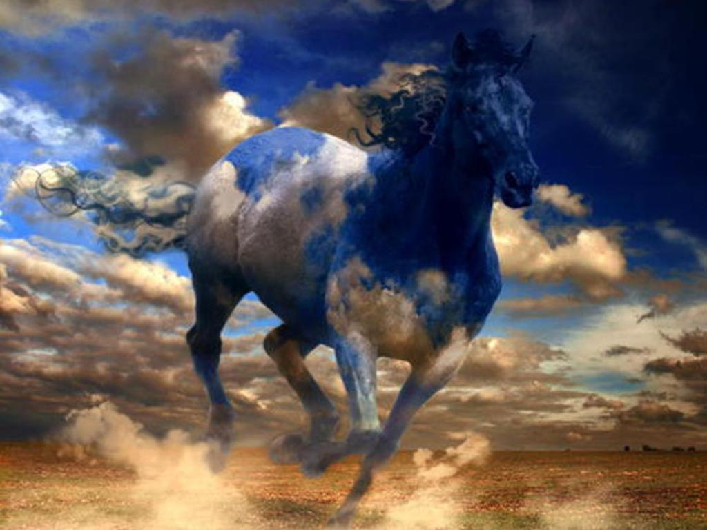 Free horse wallpaper 1024x768 1421 free horse wallpaper voltagebd Image collections