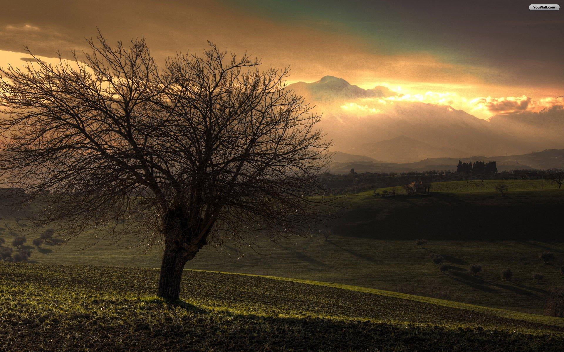 Free Landscape Sunset Wallpaper