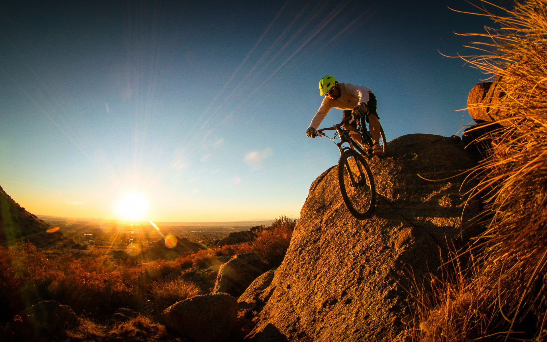 Free Mountain Bike Wallpaper