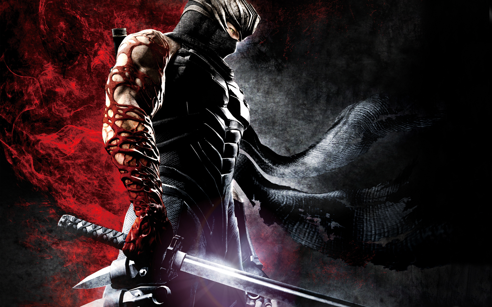 Free Ninja Gaiden Wallpaper