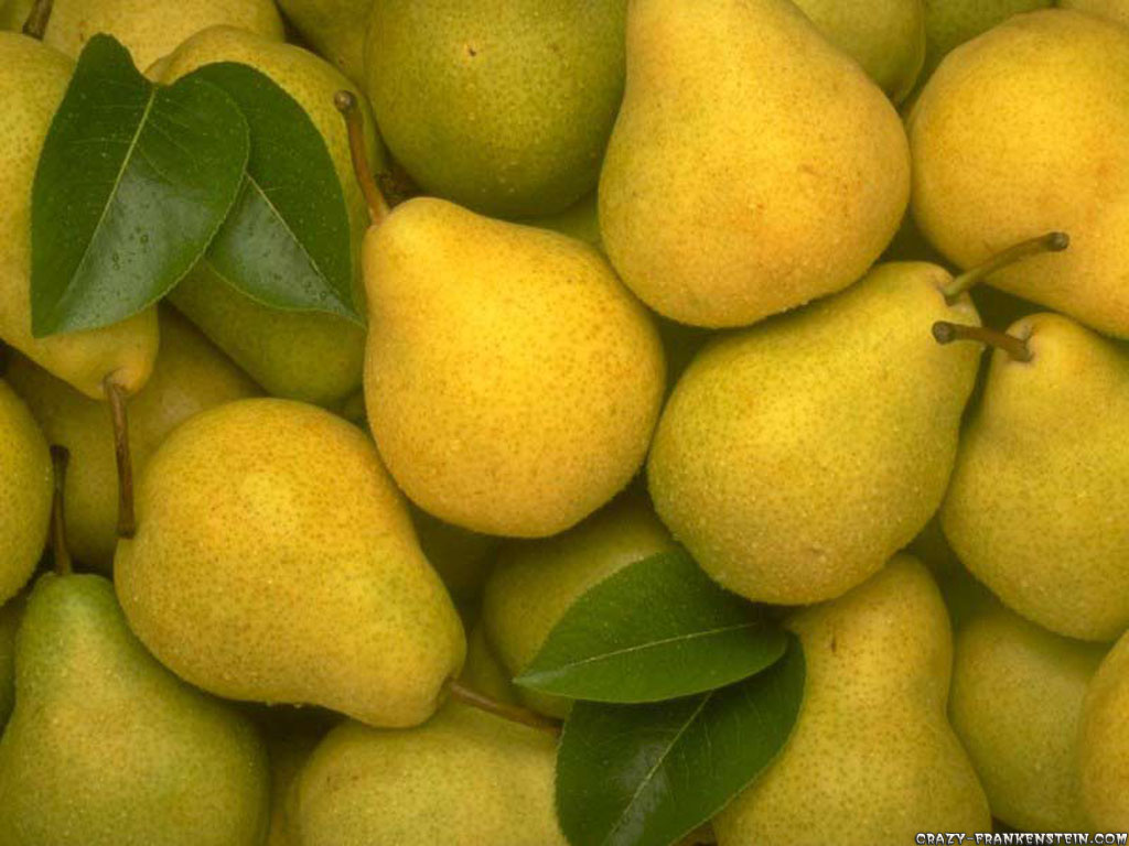 Free Pears Wallpaper