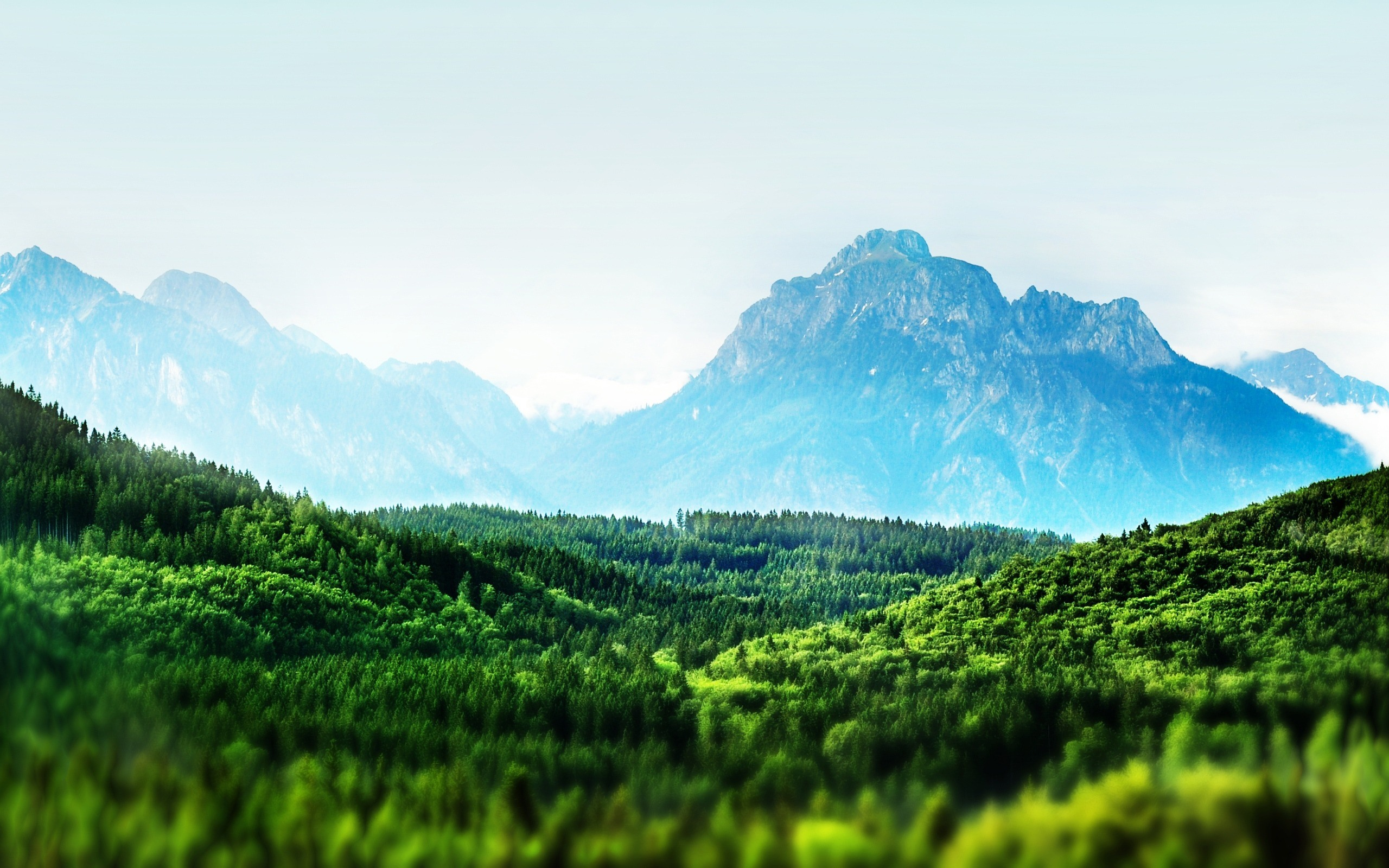 Free Perfect View Wallpaper