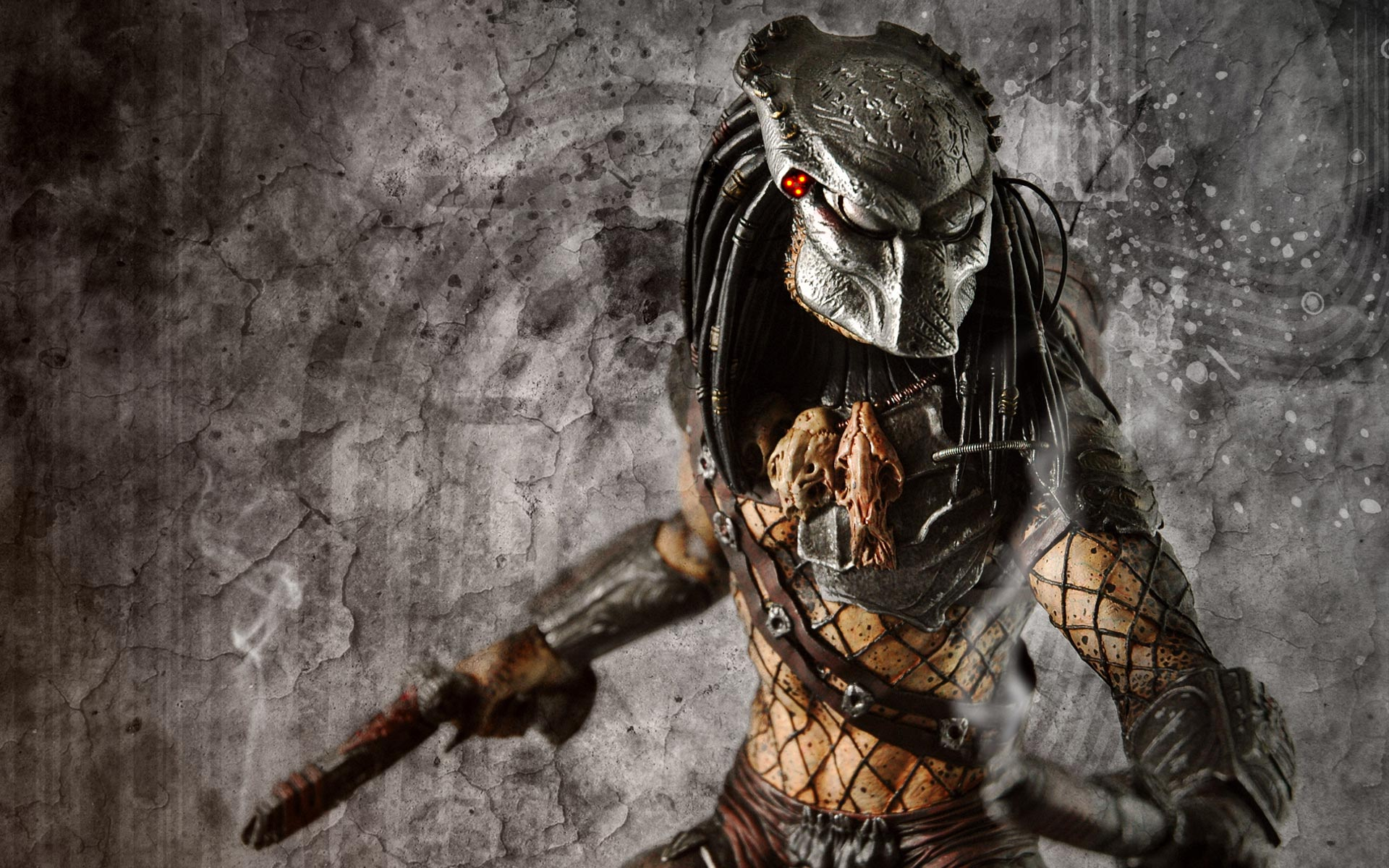 Free Predator Wallpaper