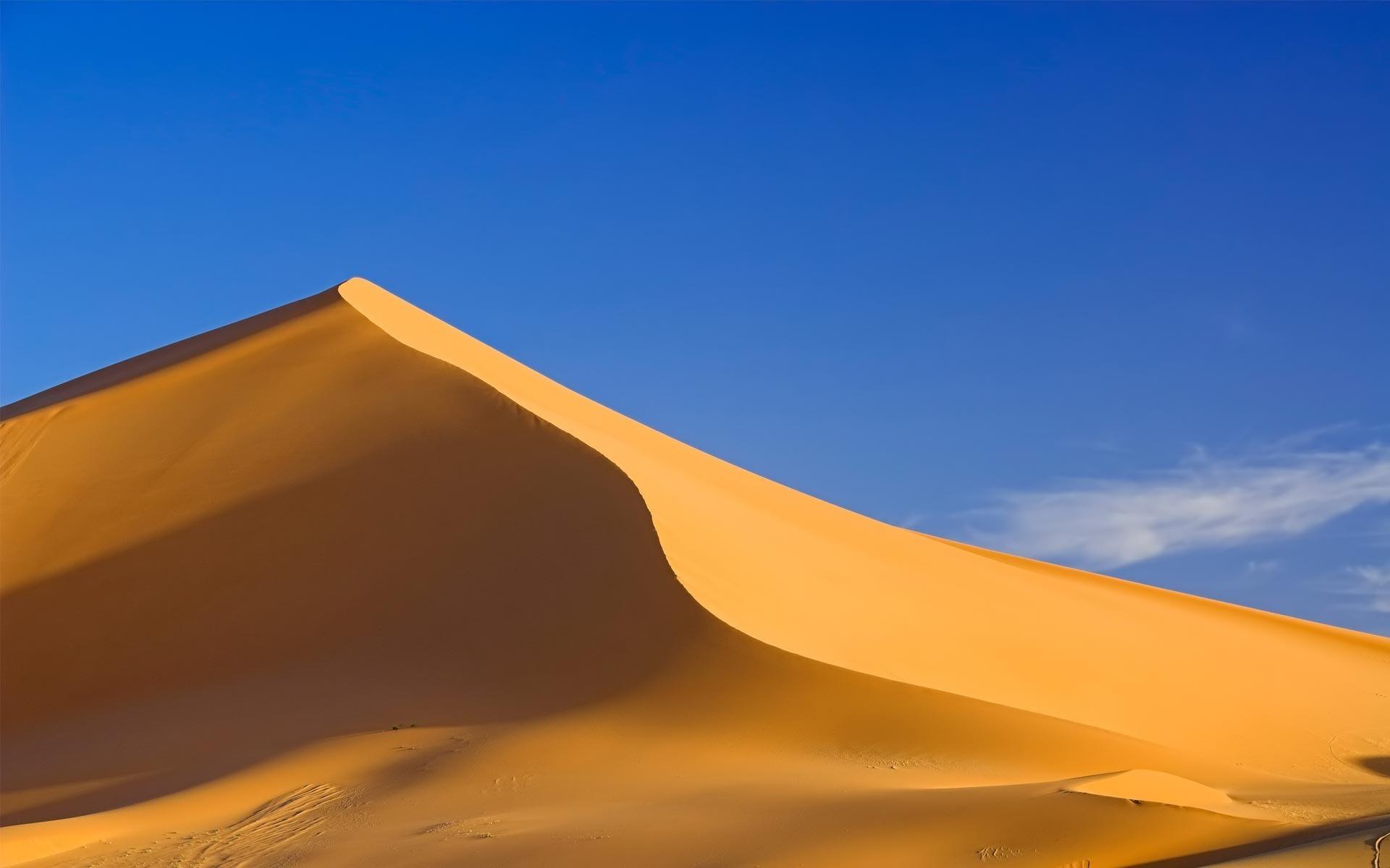 Free Sand Dunes Wallpaper
