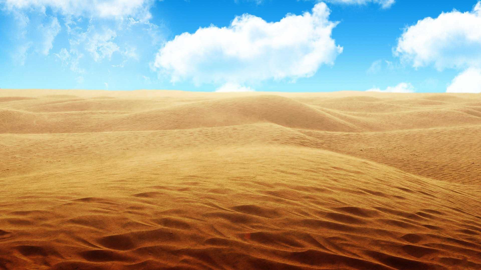 Free Sahara Desert Wallpaper