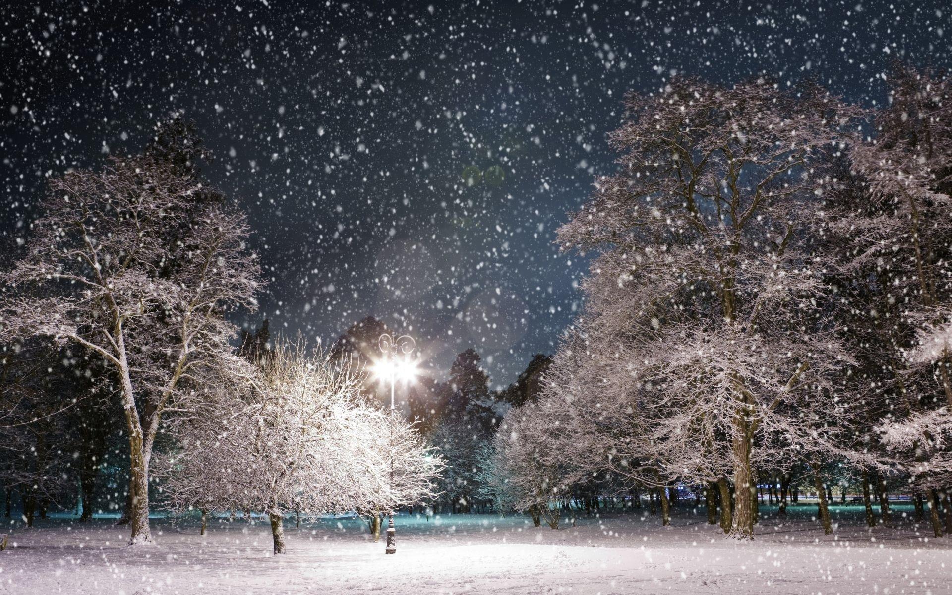 Snow Falling Wallpaper 15822
