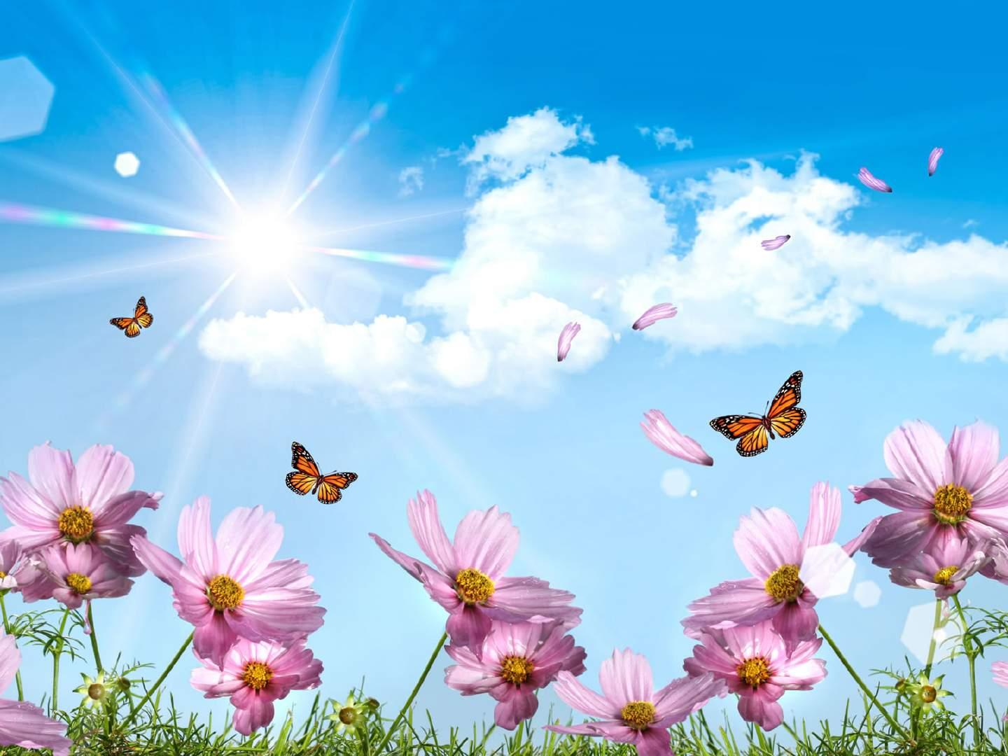 Summer desktop 3d wallpapers free wallpaper in free desktop backgrounds category: 3D-abstract-landscapes-wallpapers.