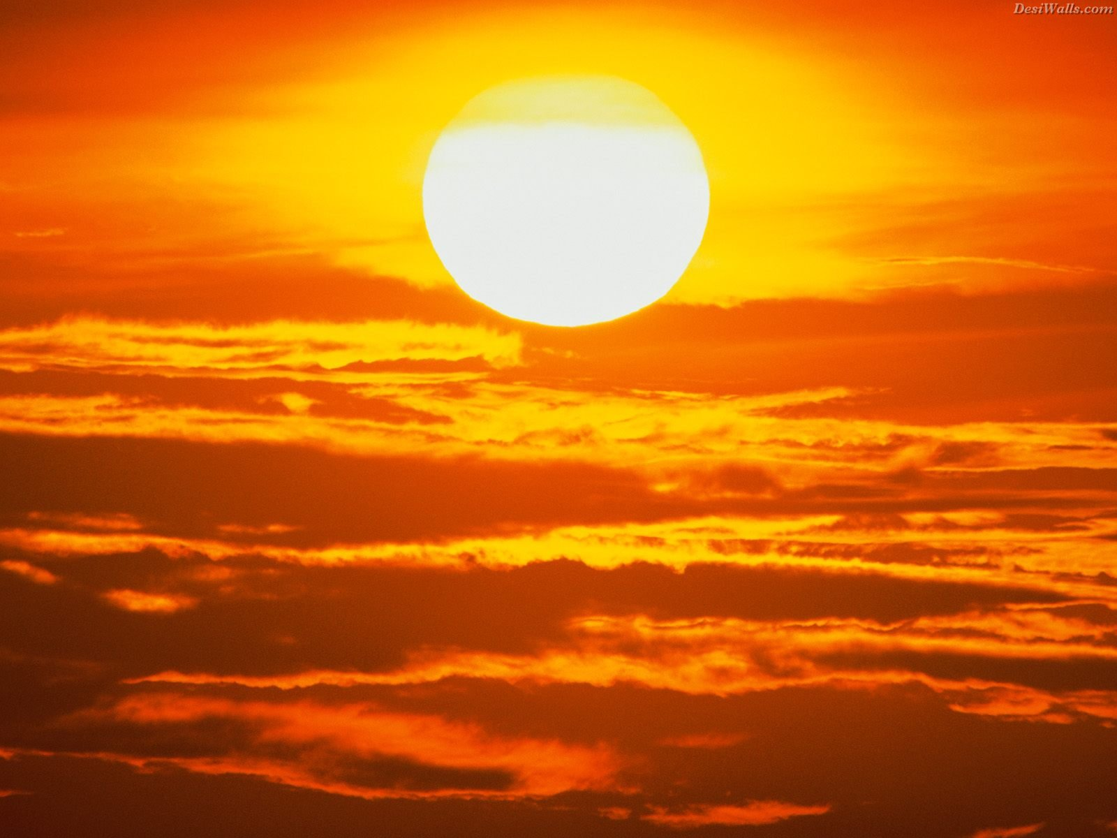 Free Sun Wallpaper 22623 1920x1200 px