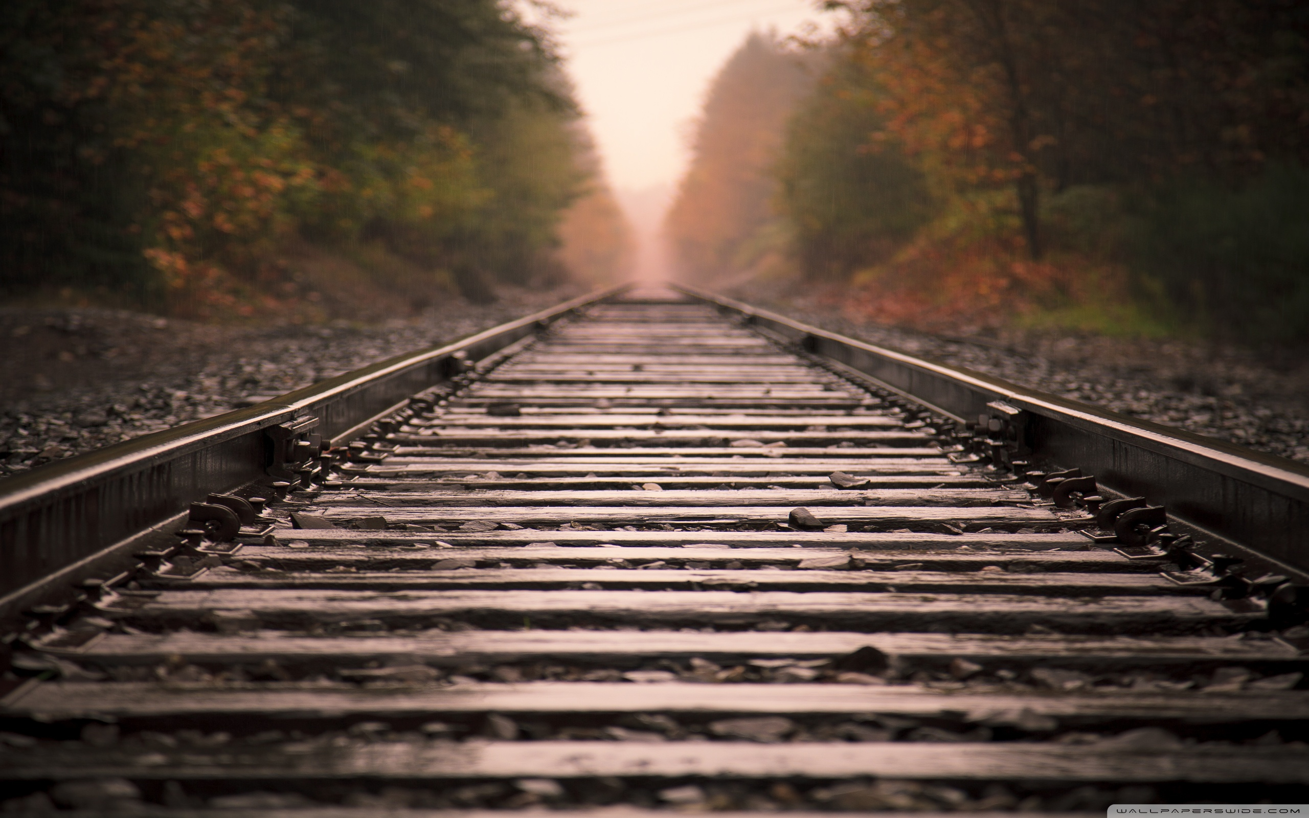 Free Train Track Wallpaper