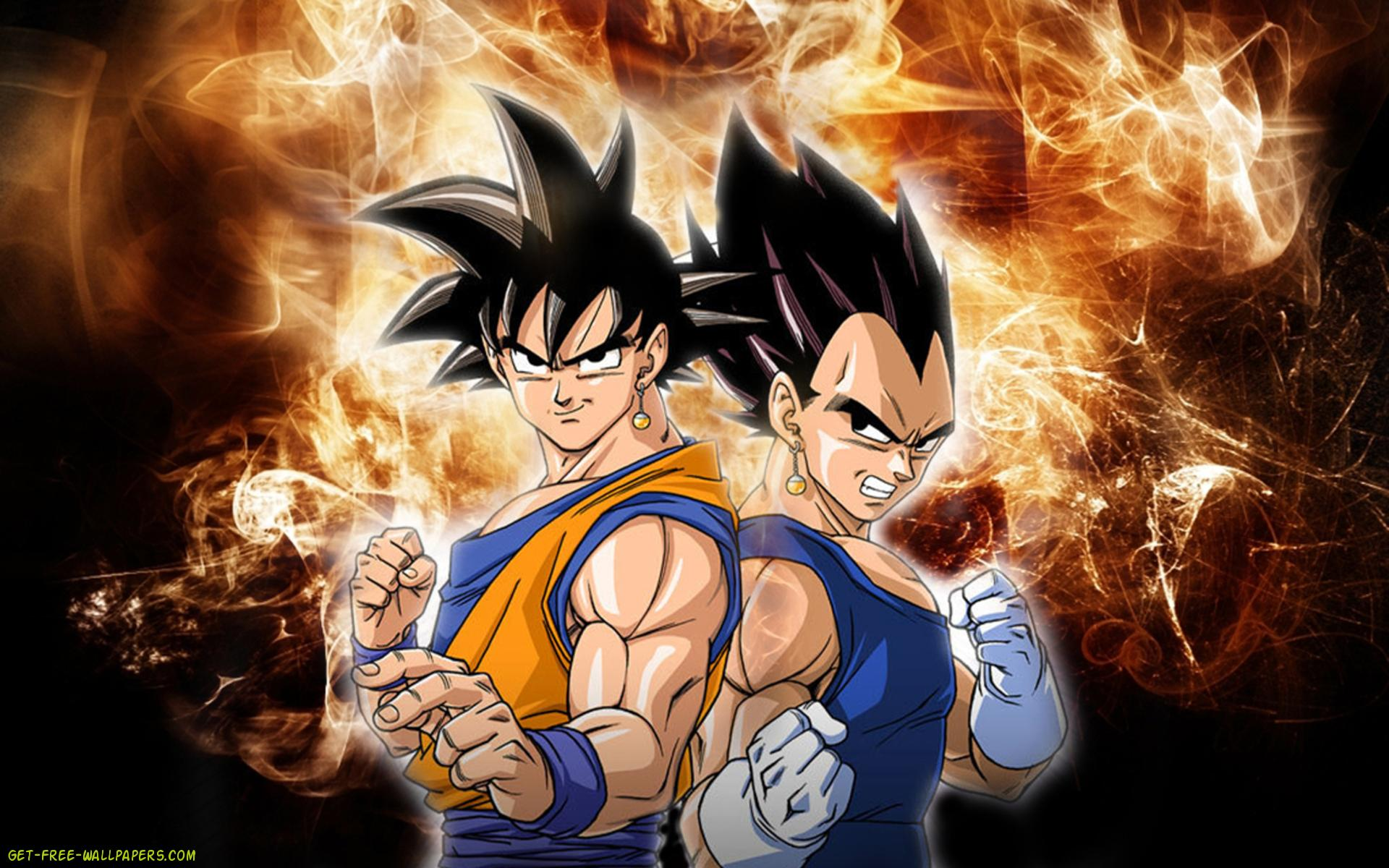 Dragon Ball Z Goku vs Vegeta Wallpaper Details and Download Free