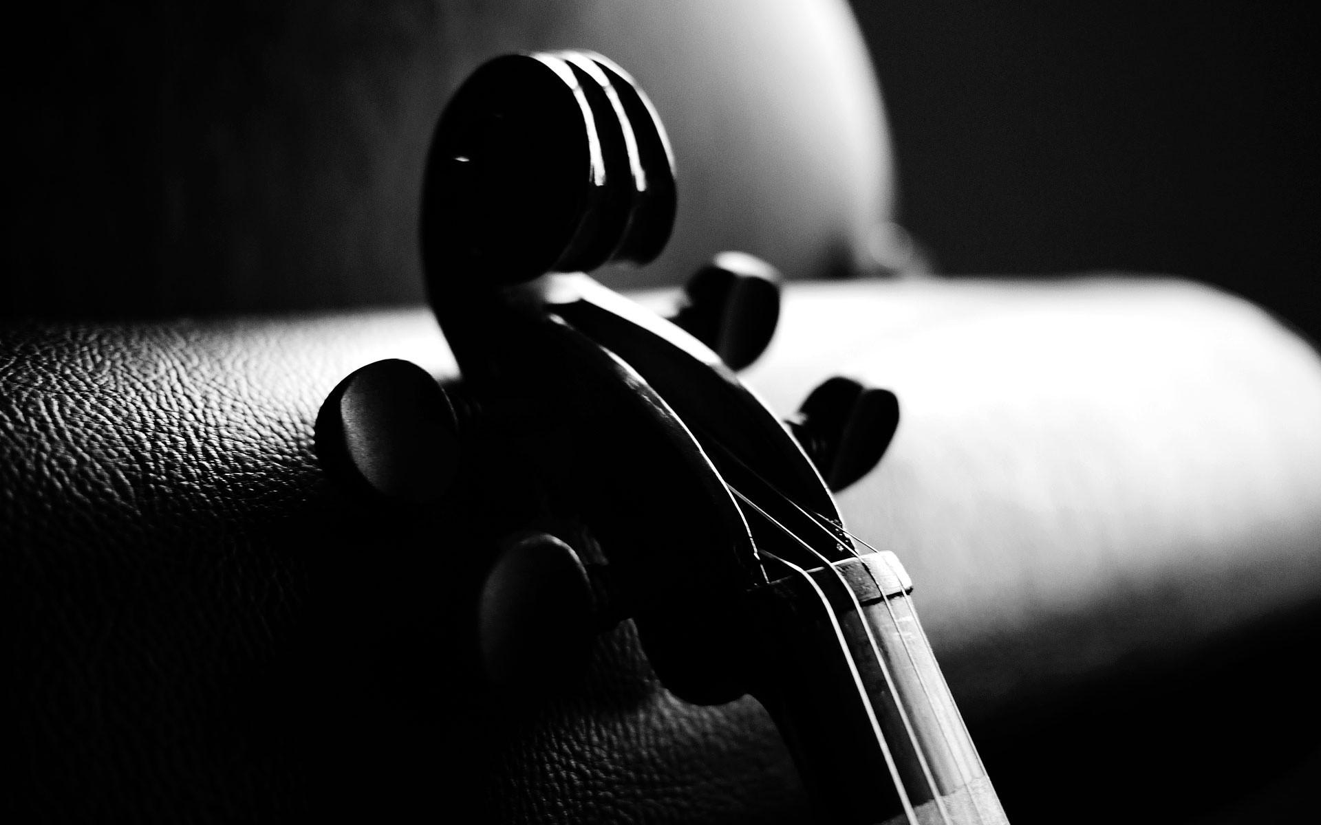 Free Violinist Wallpaper