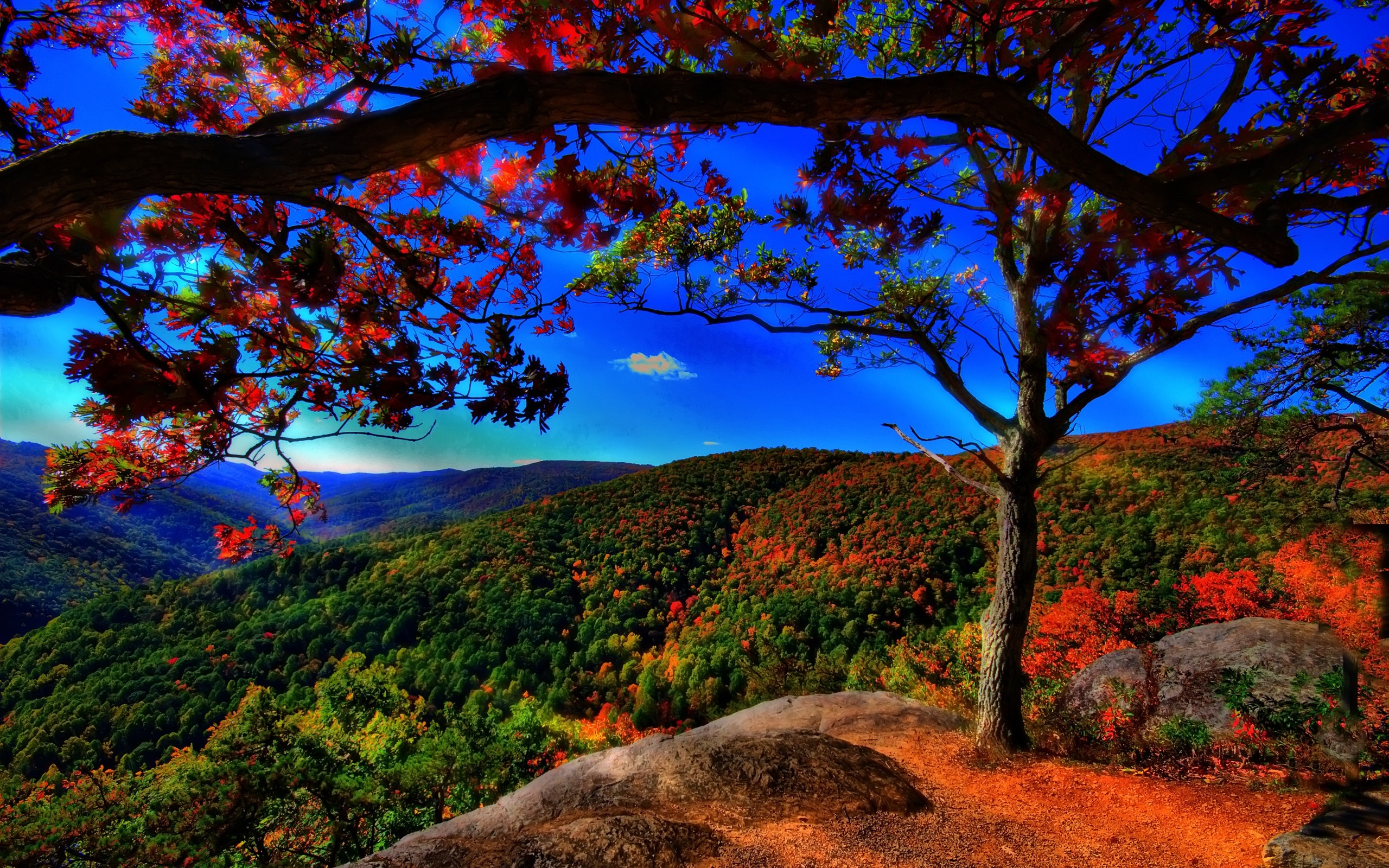 autumn-free-wallpaper-autumn-landscape ?