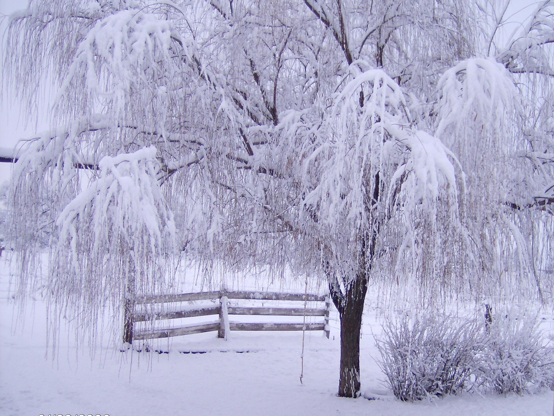 winter landscape wallpapers.winter wallpapers free download ...