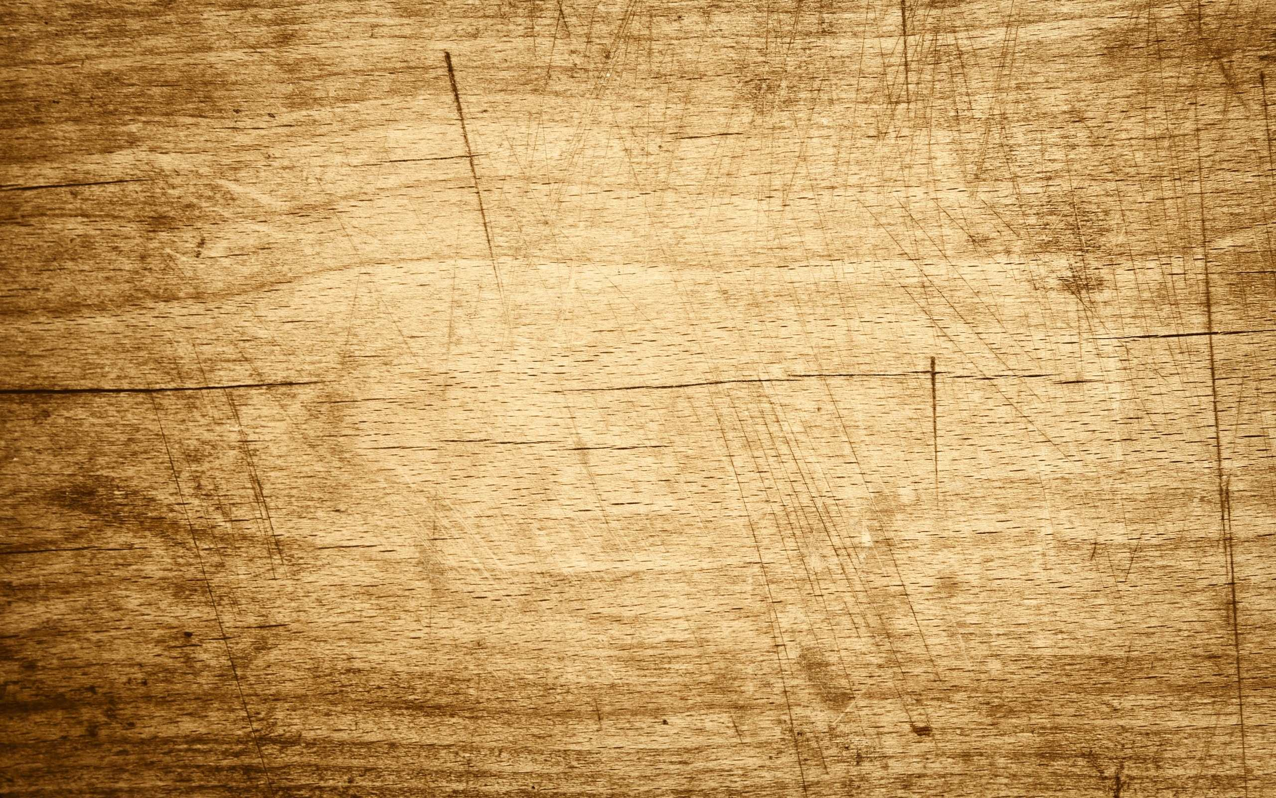 Free Woods Background
