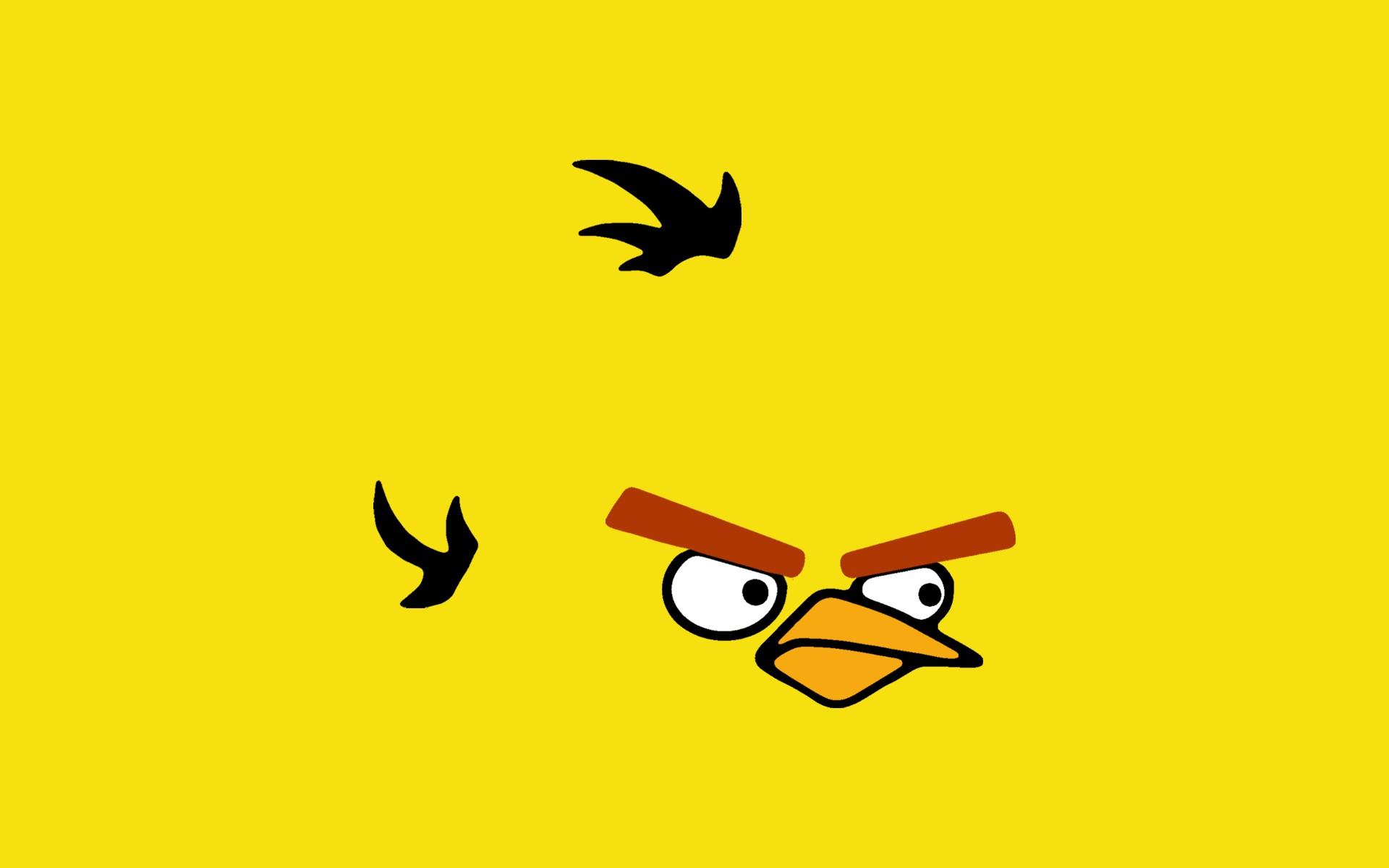 Free Yellow Bird Wallpaper 40087 1920x1200 px