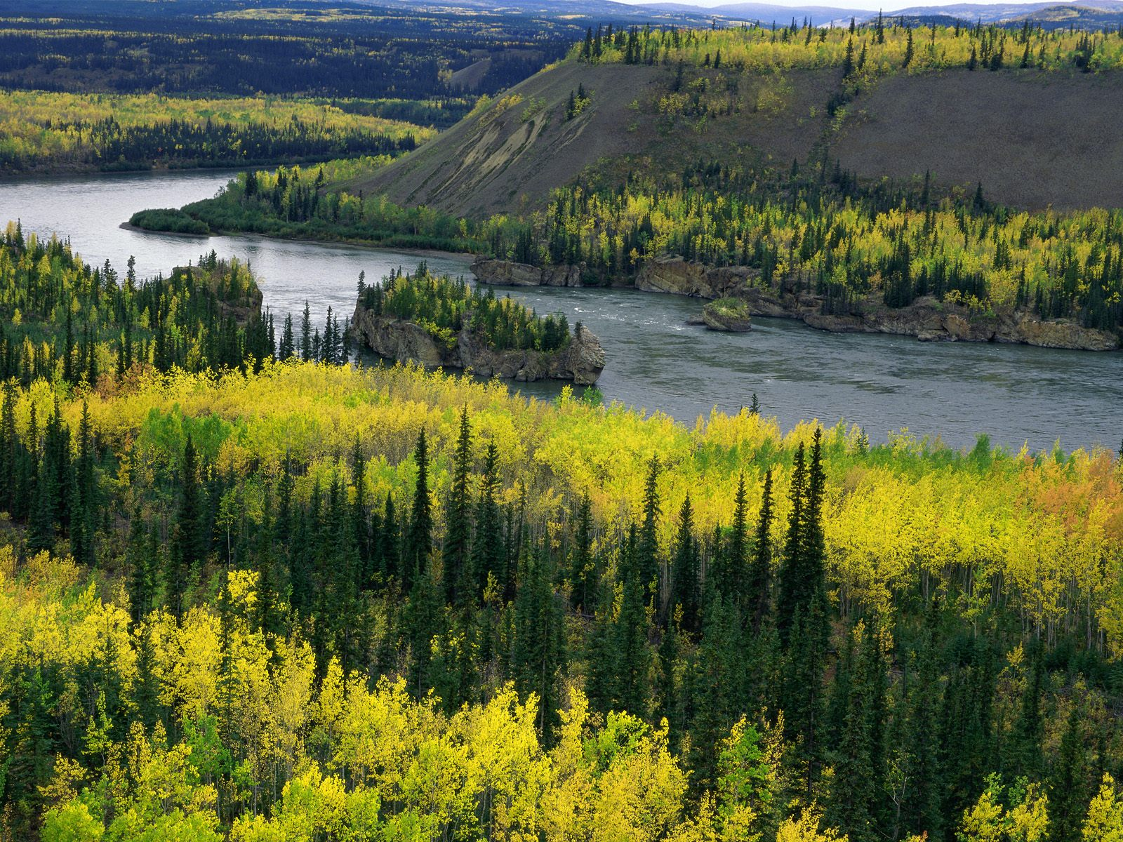 Free Yukon Wallpaper 37491 1920x1080 px