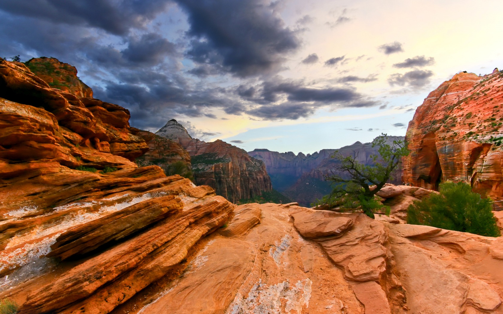 Free Zion National Park Wallpaper