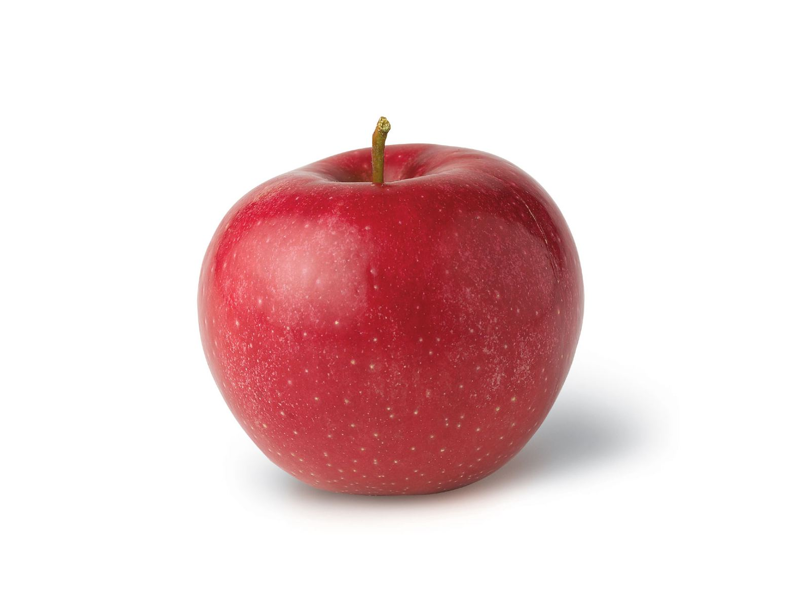 Red Fresh Apple (click to view)