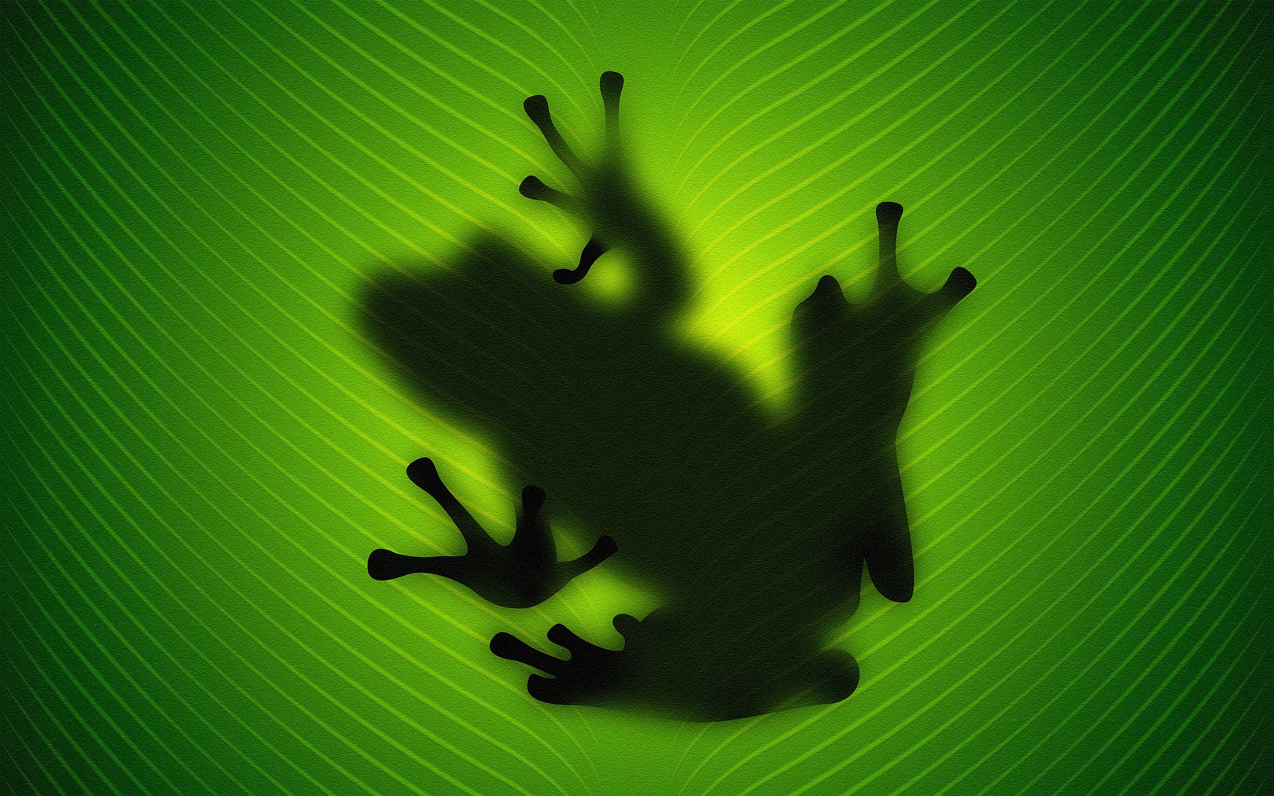 Frog Behind Leave