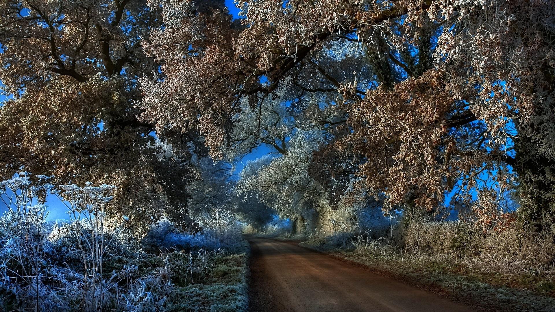 Frosty HD
